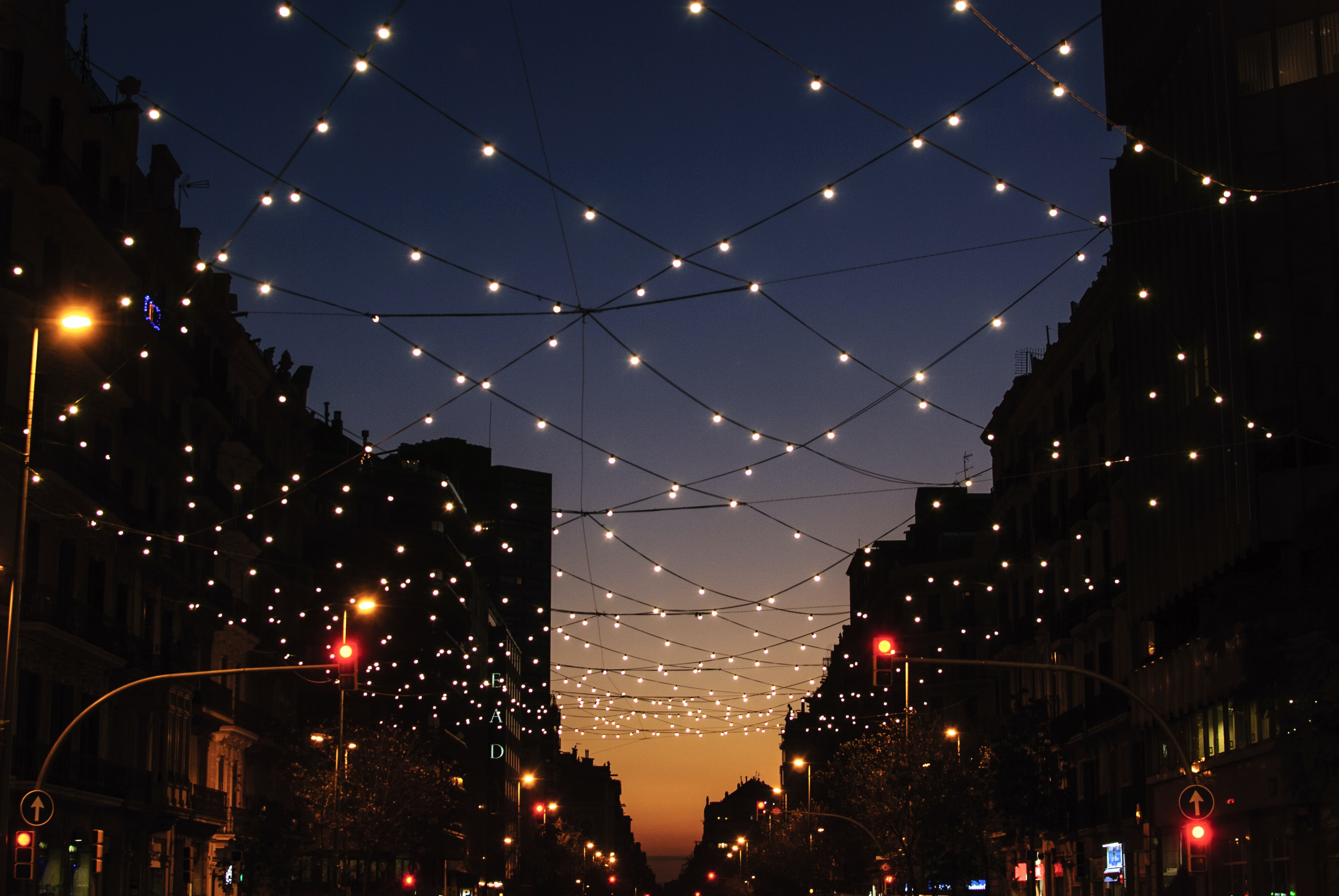 string lights during night time