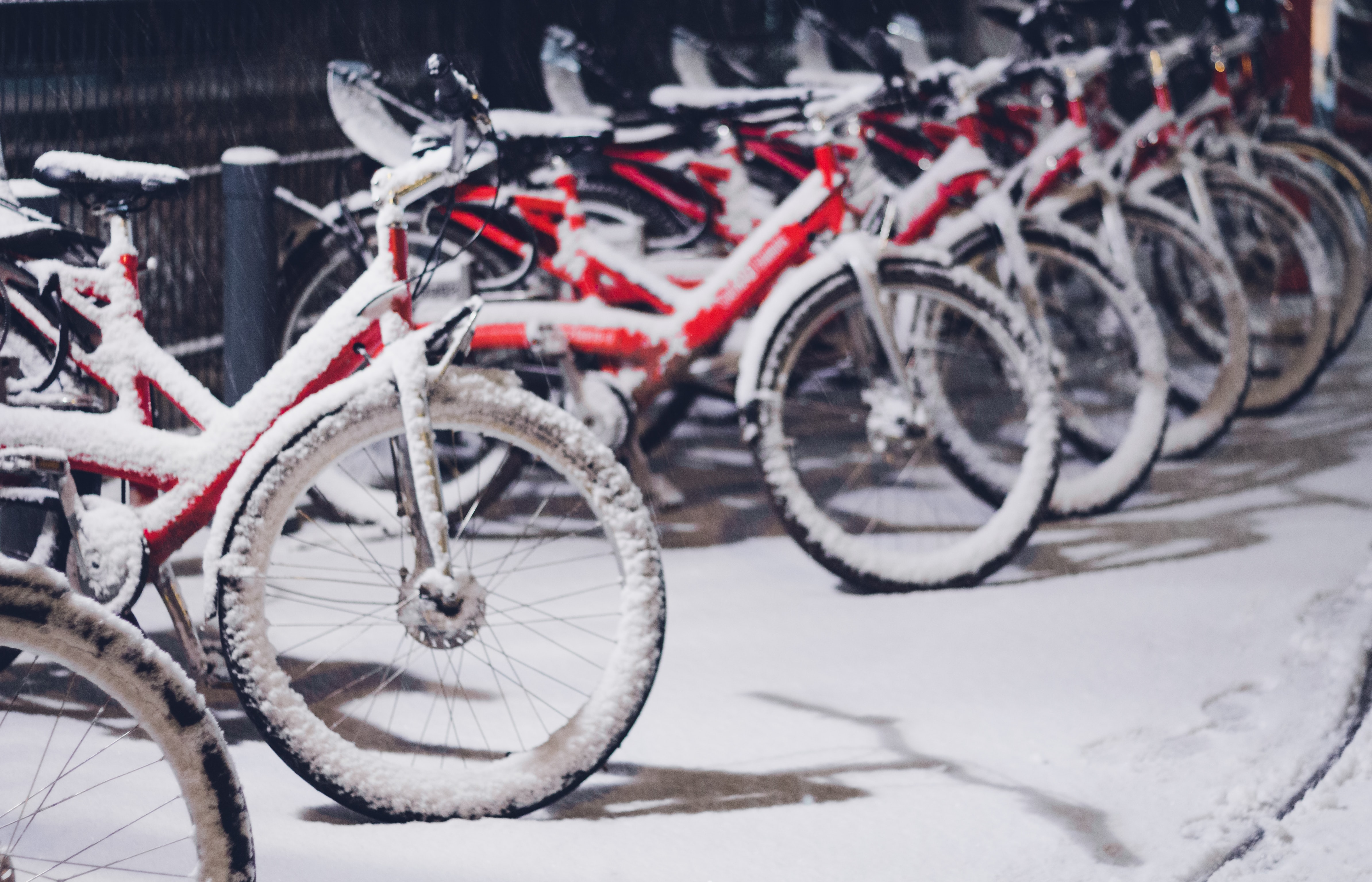 red and black bikes covered with snow