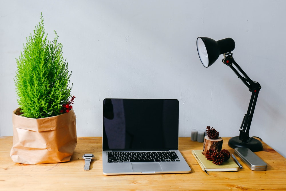 MacBook Pro beside between green potted plant and desk lamp on brown wooden table