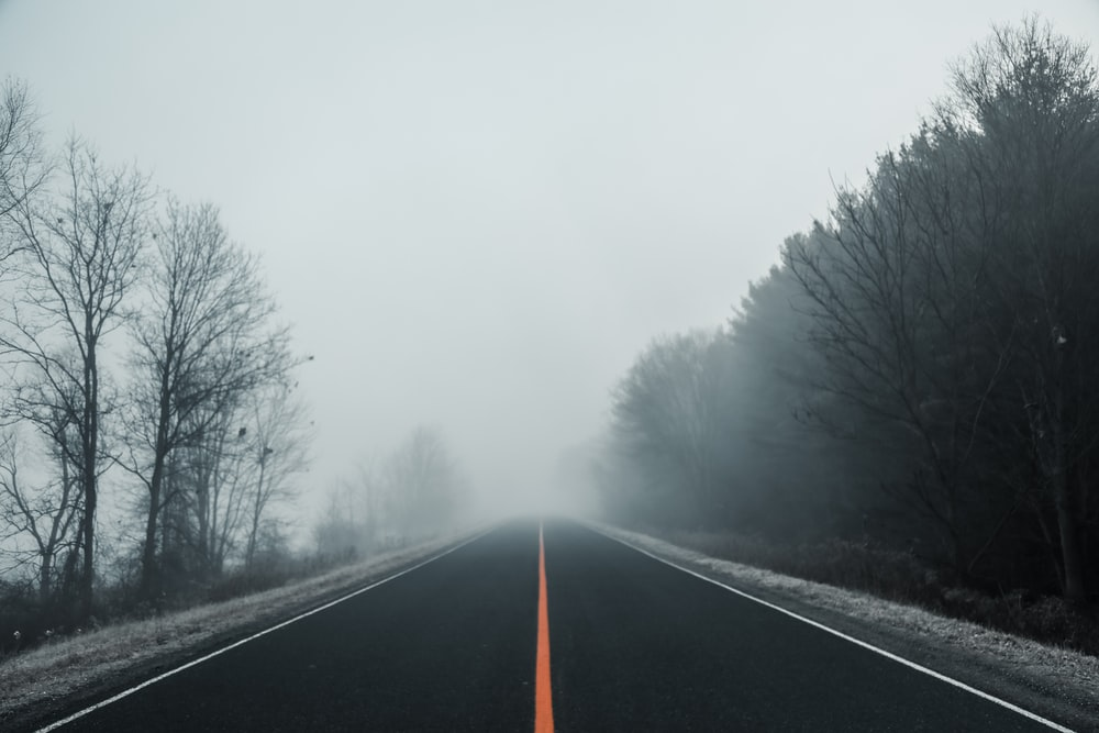 empty road covered with fogs