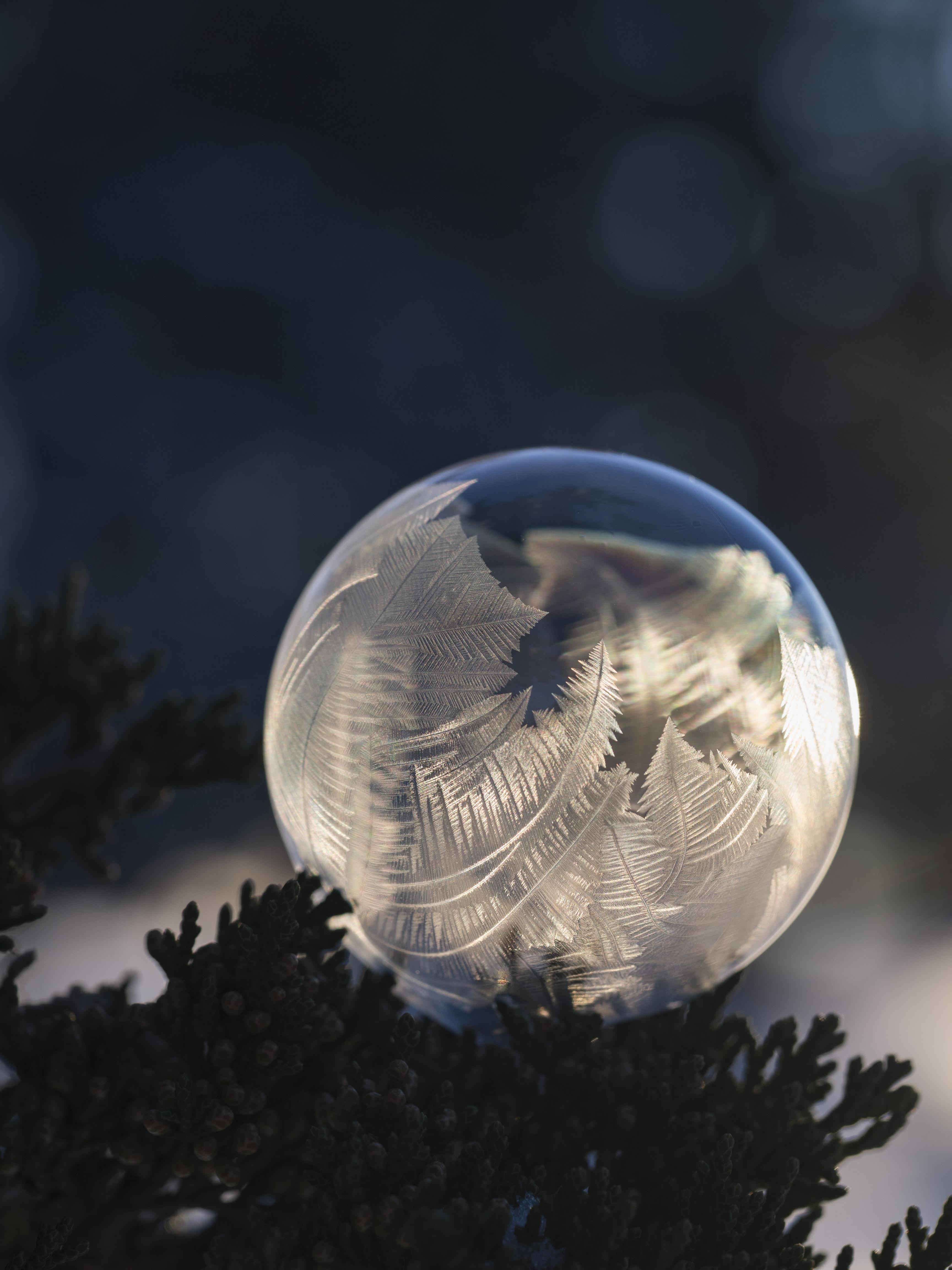closeup photography of glass ball