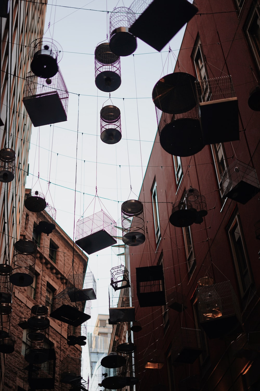 silhouette photo of metal birdcages hanged on cables between buildings