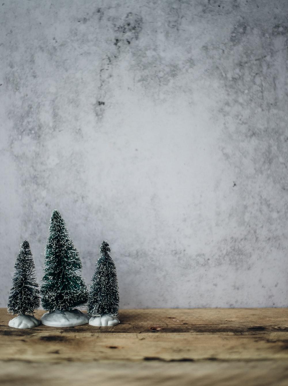 three green pine tree miniature near gray concrete wall