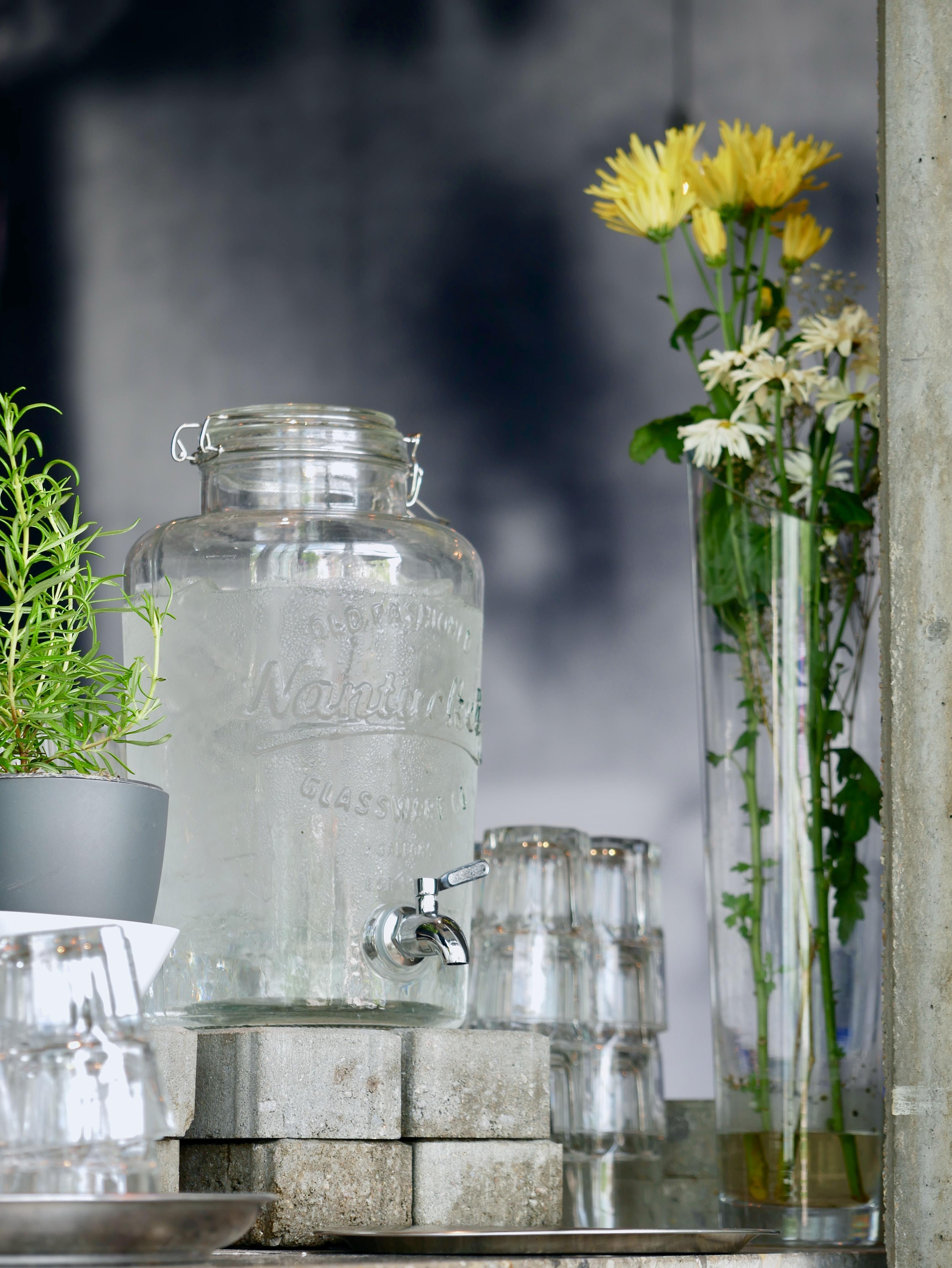 clear glass beverage dispenser beside green leafed plant