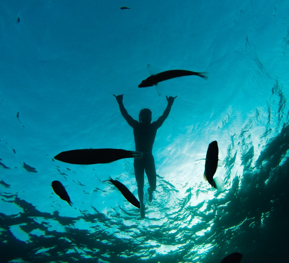 person swimming under sea
