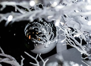 selective focus photography of silver baubles