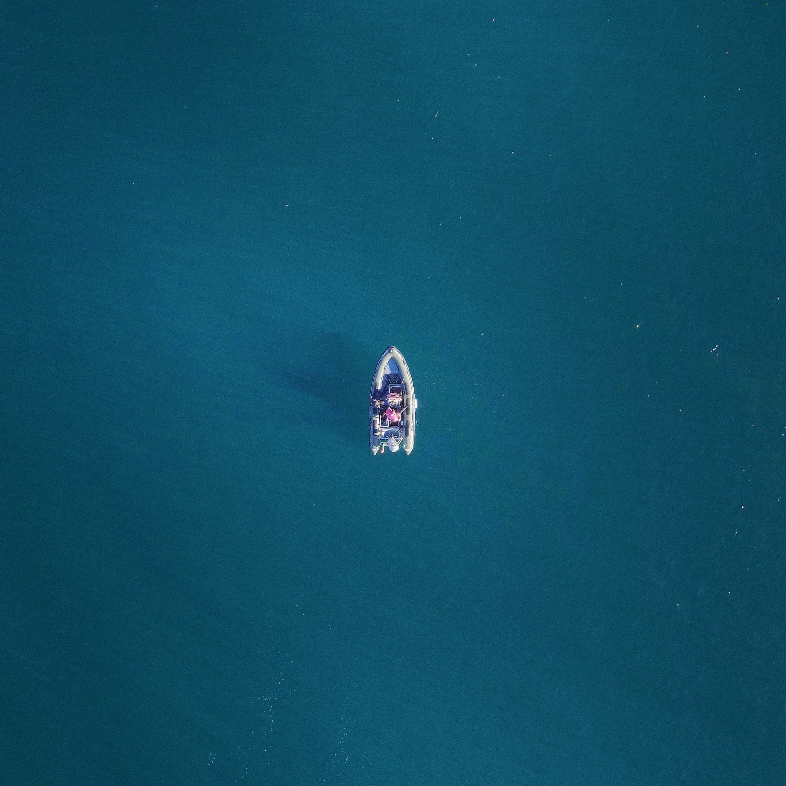 aerial photography of boat with person riding