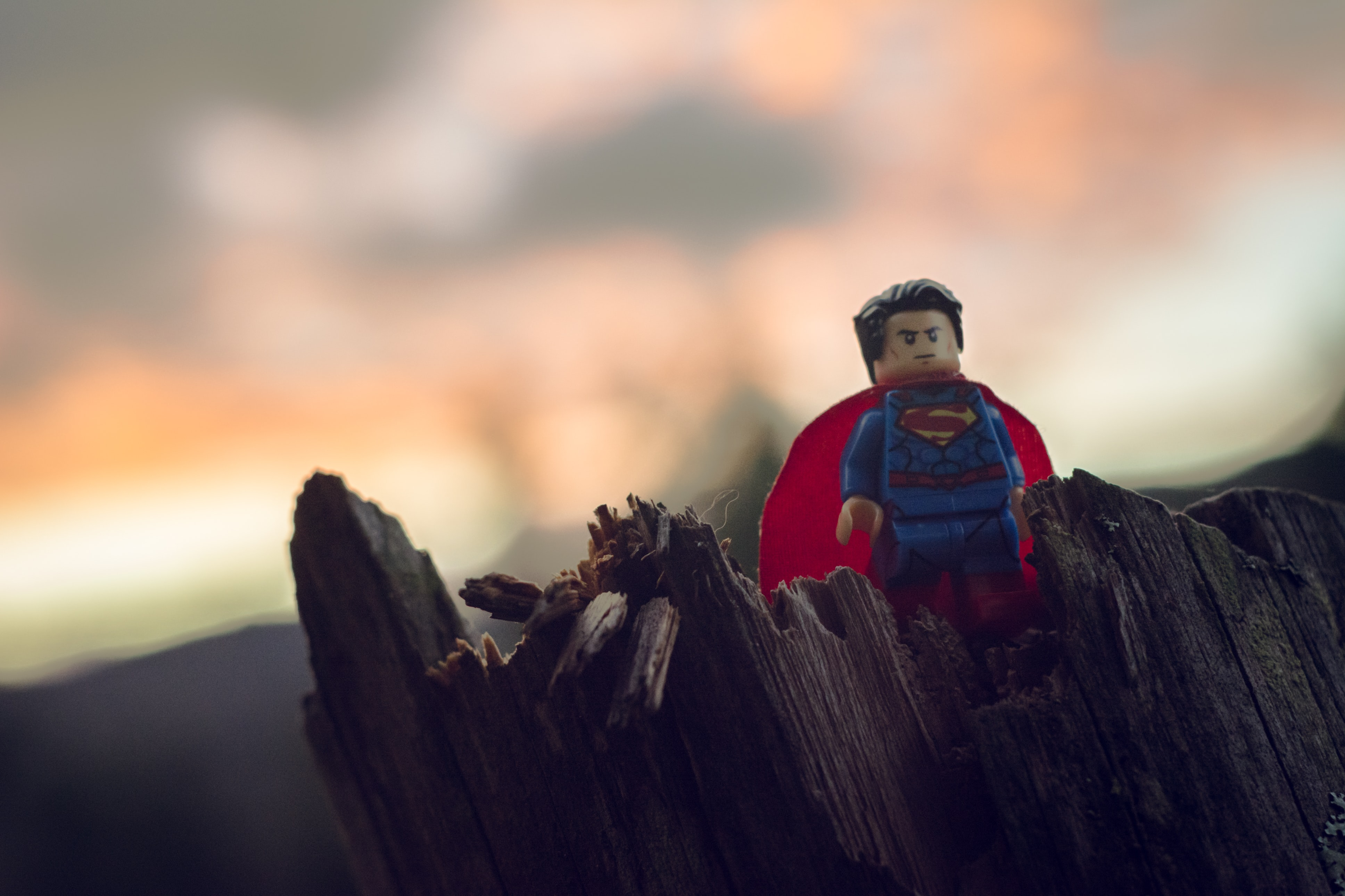 Lego Superman mini figure on tree trunk