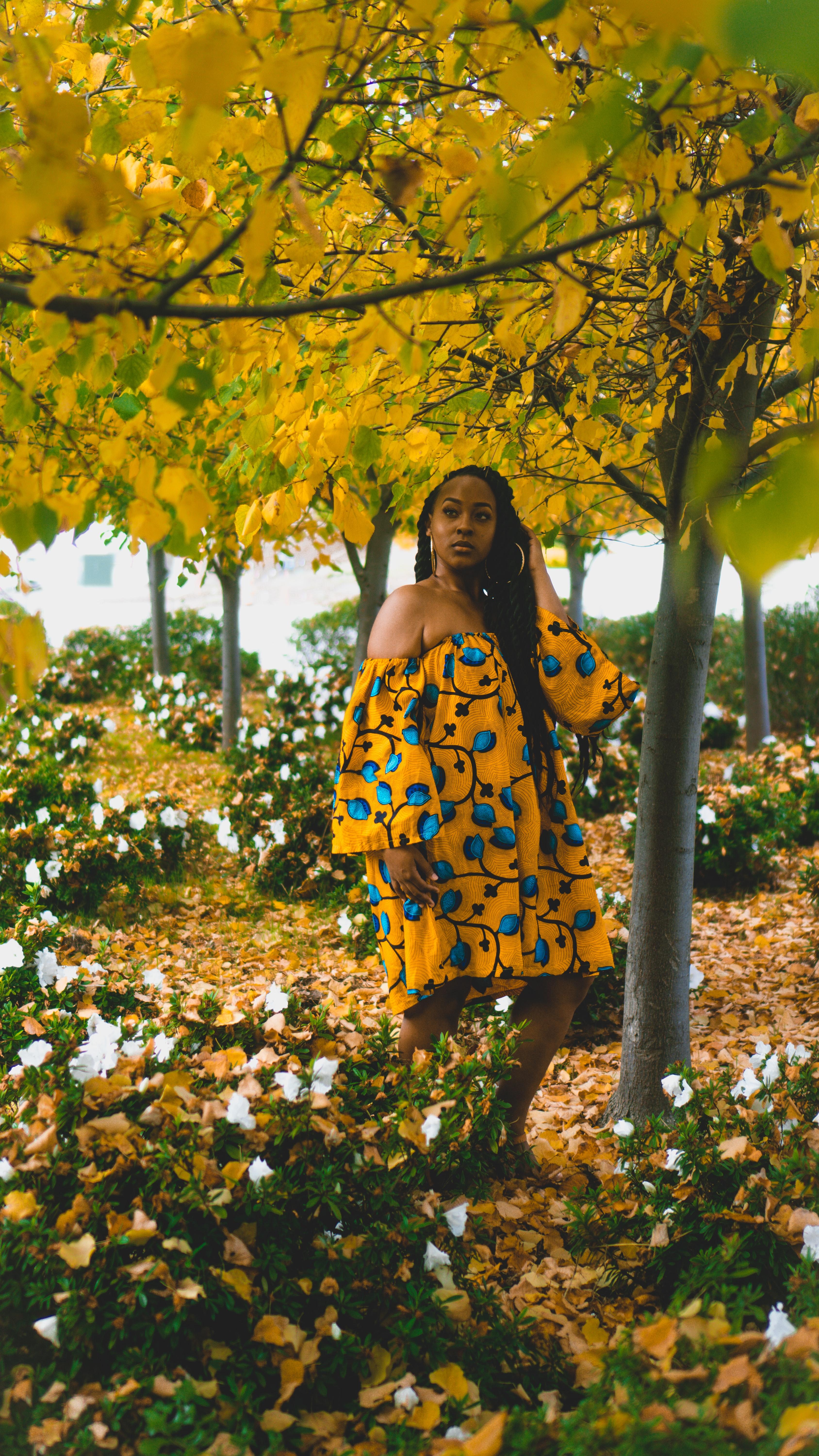 woman standing under yellow leaf tree during daytime