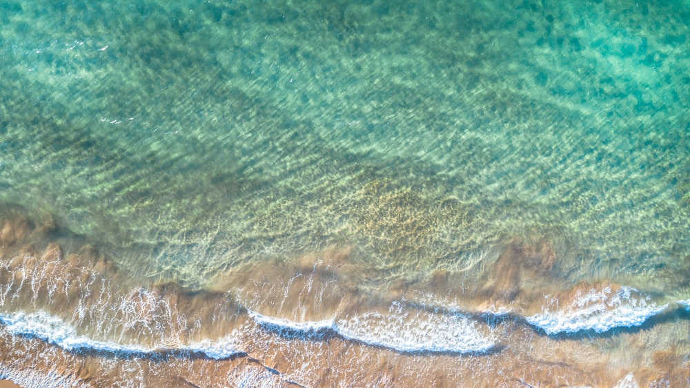 aerial photo of brown-sand beach with green waters