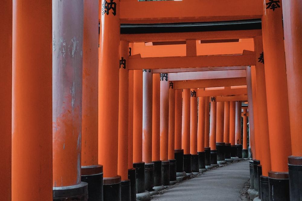 red tori gate during daytime