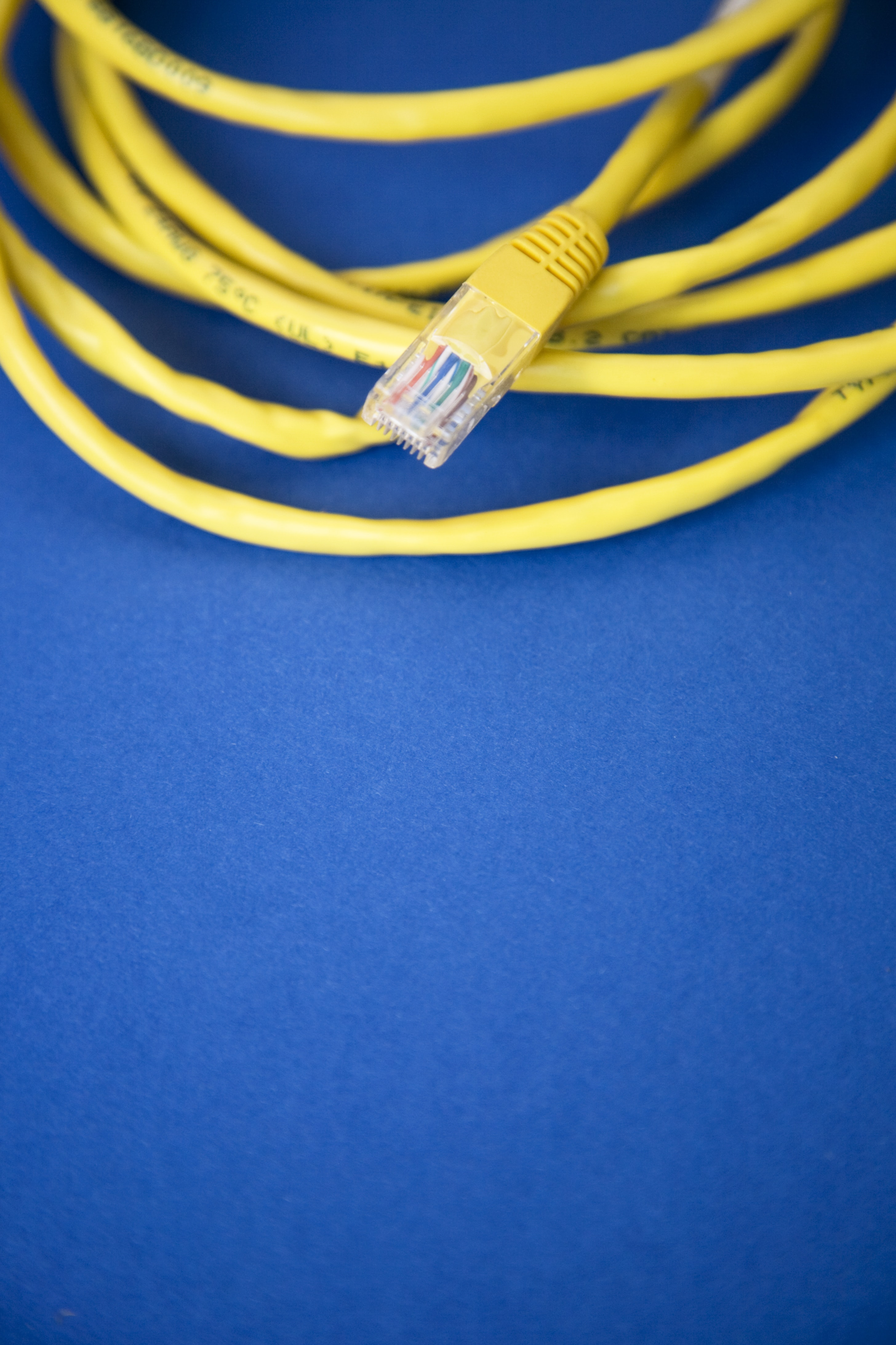 Ethernet cable on blue surface