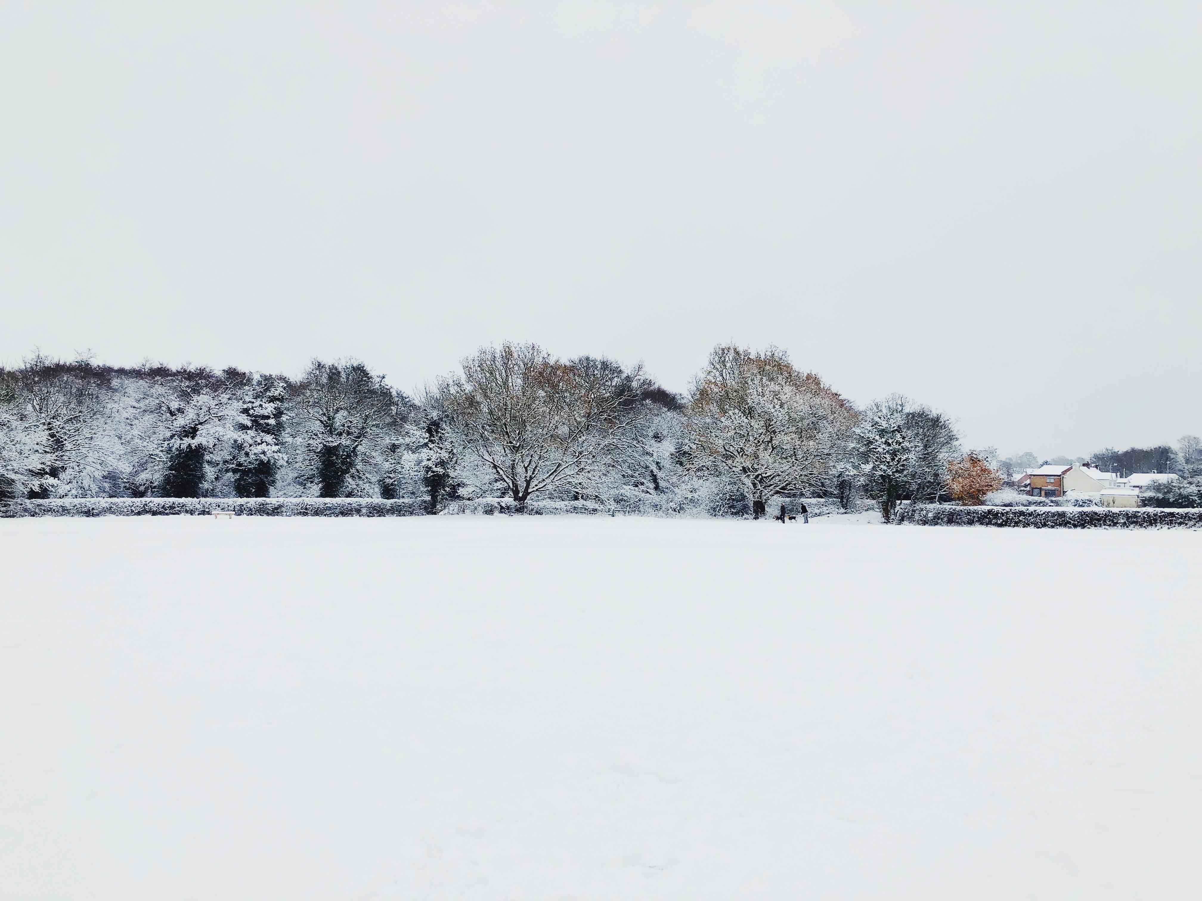 snow covered ground under white sky at daytime