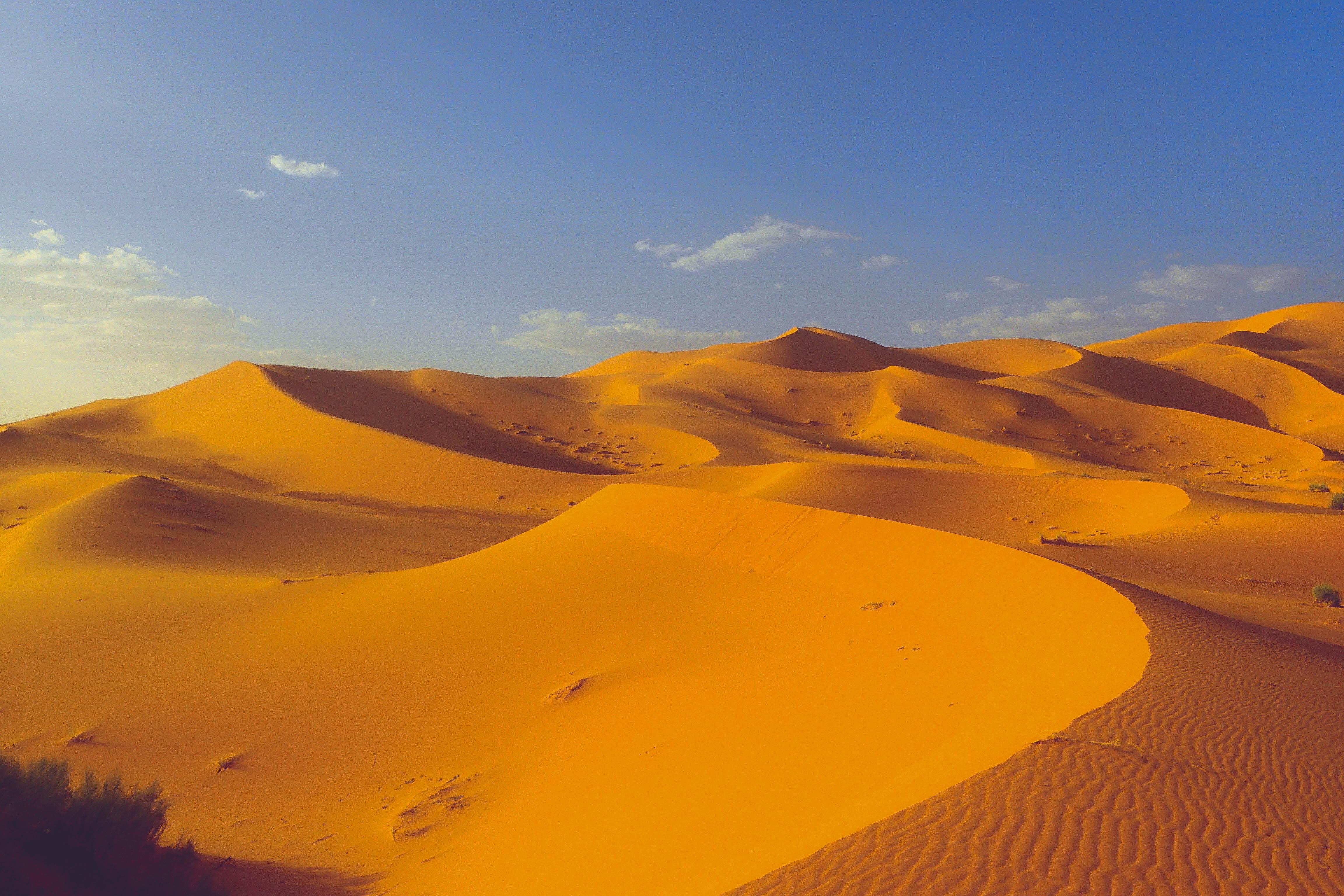 aerial photo of desert