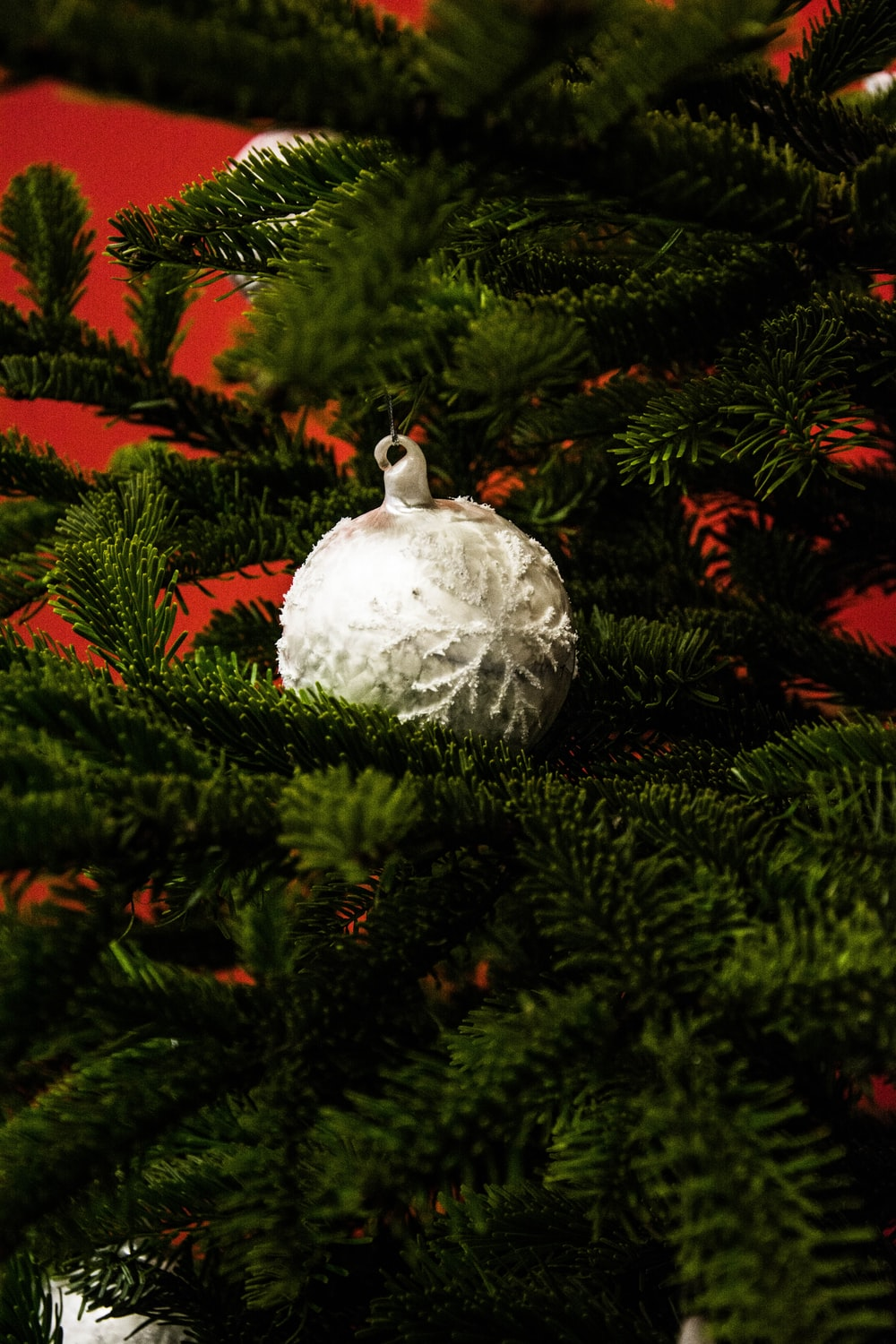 white bauble hanging on green tree