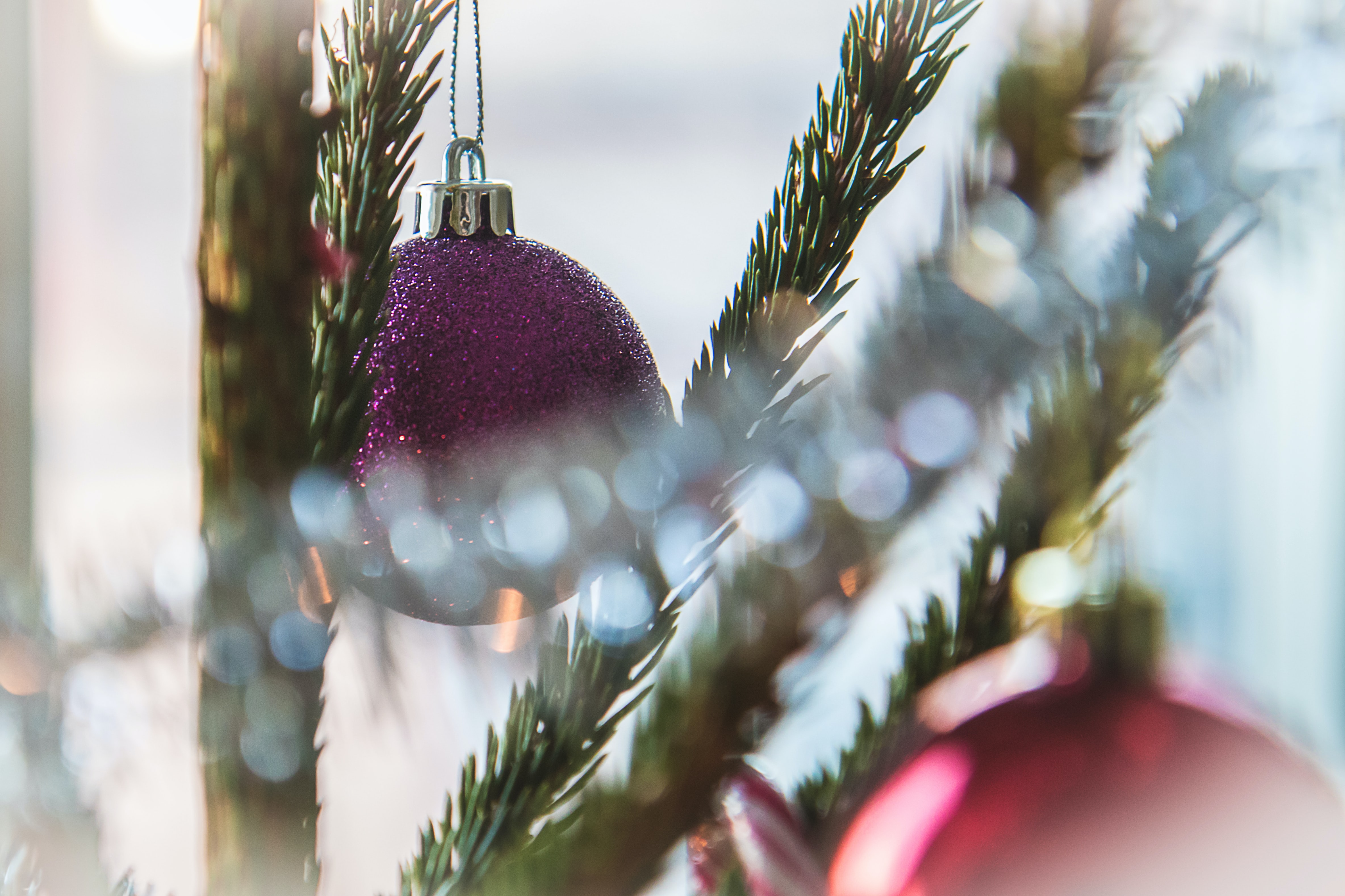 shallow focus photography of purple baubles