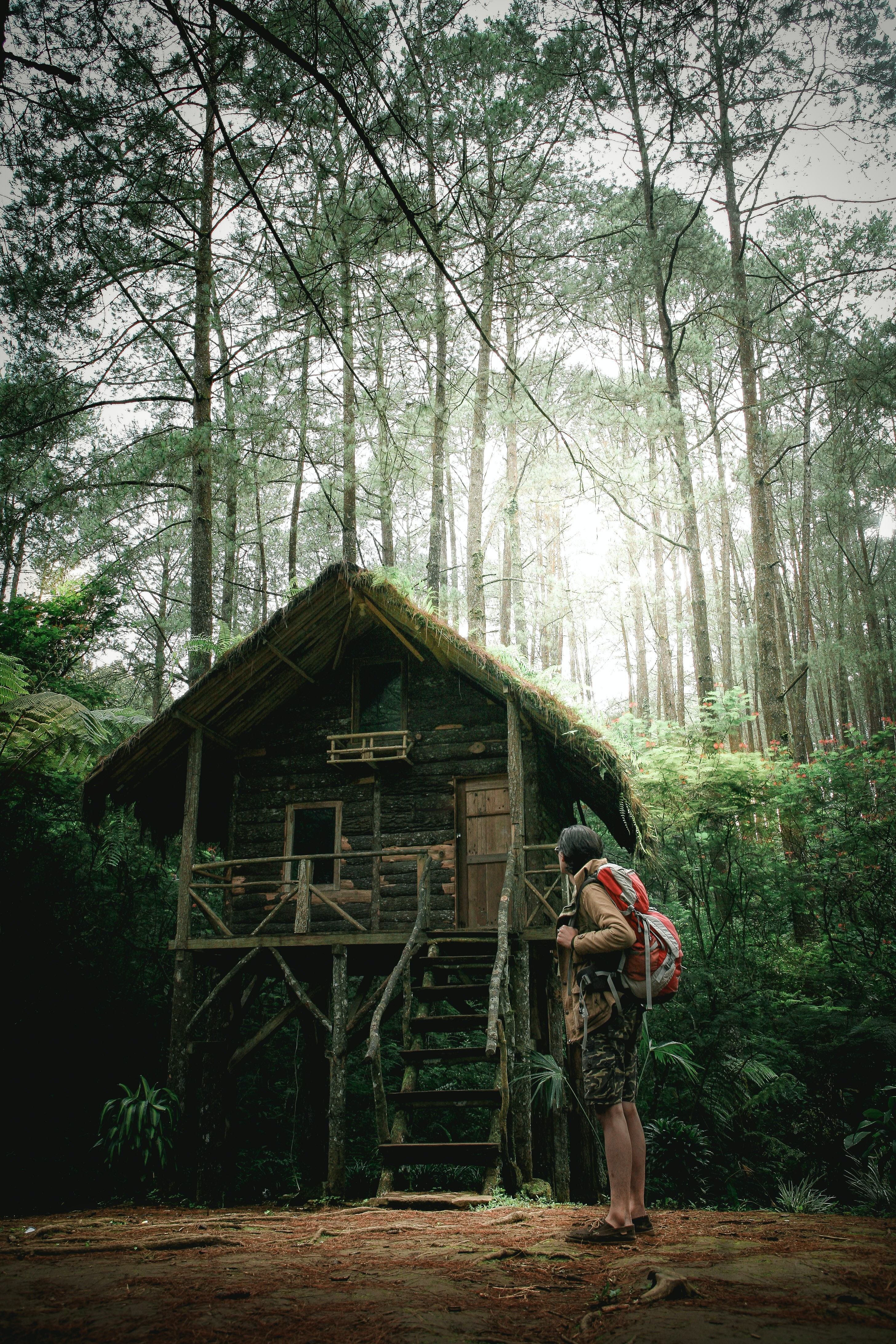 mountaineer standing in the middle of forest nearby hut
