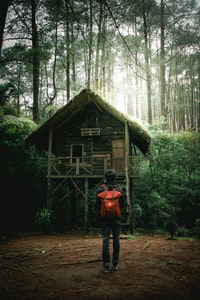 person standing in front of house located in forest