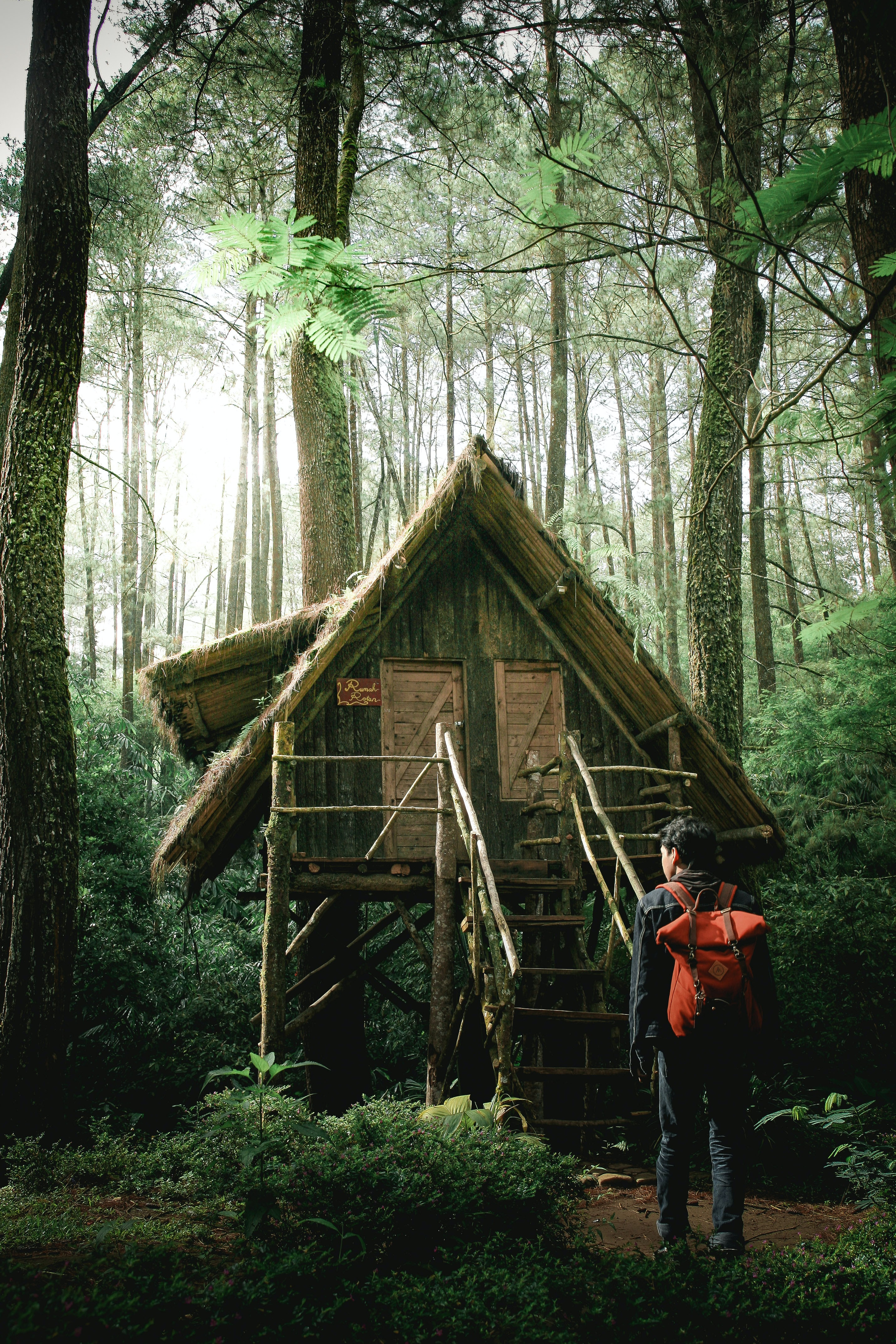 photo of man standing infront of green wooden bungalow in the middle of forest