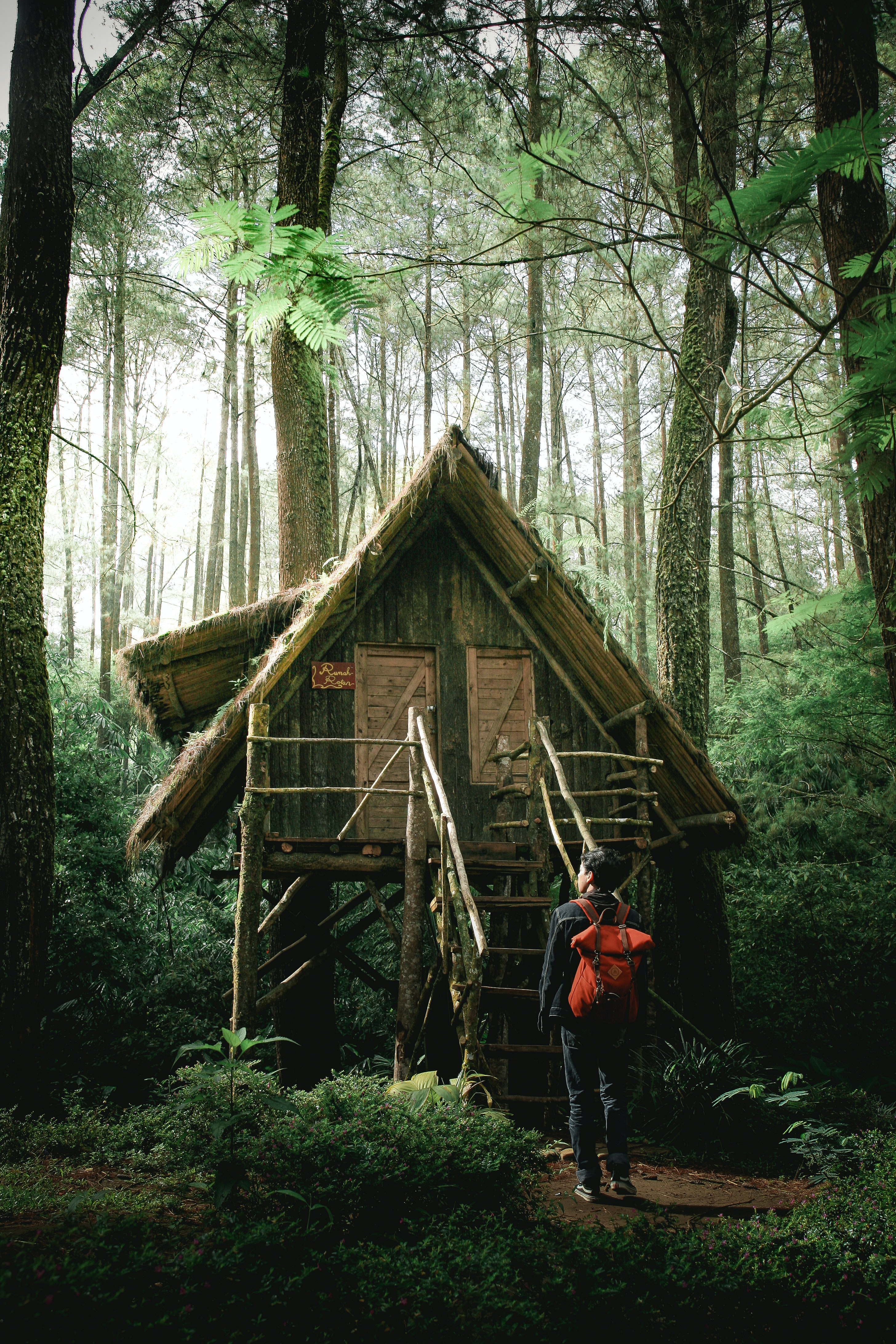 man infront of wooden house in the middle of dense forest