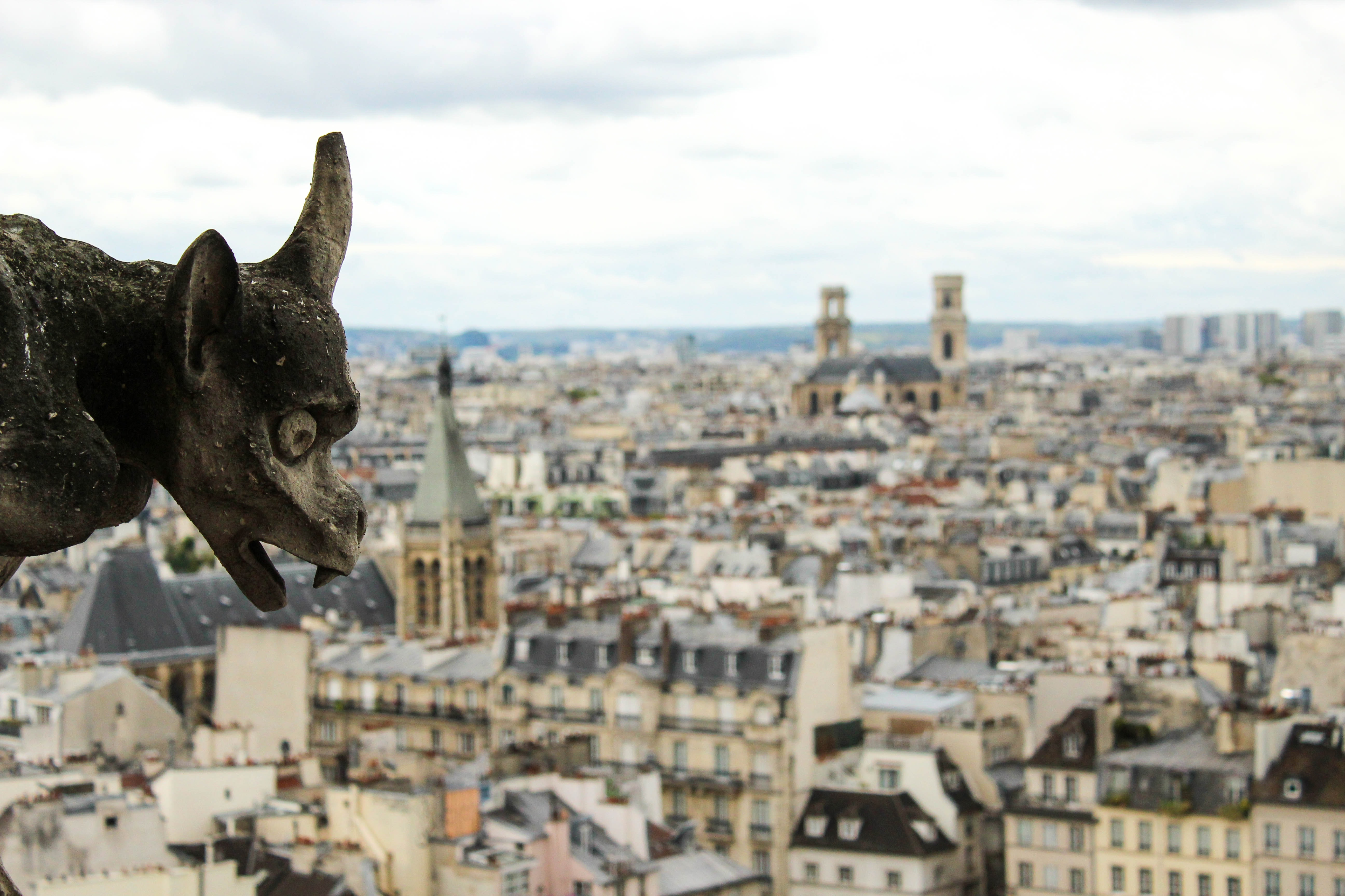 gargoyle with high angled view of town