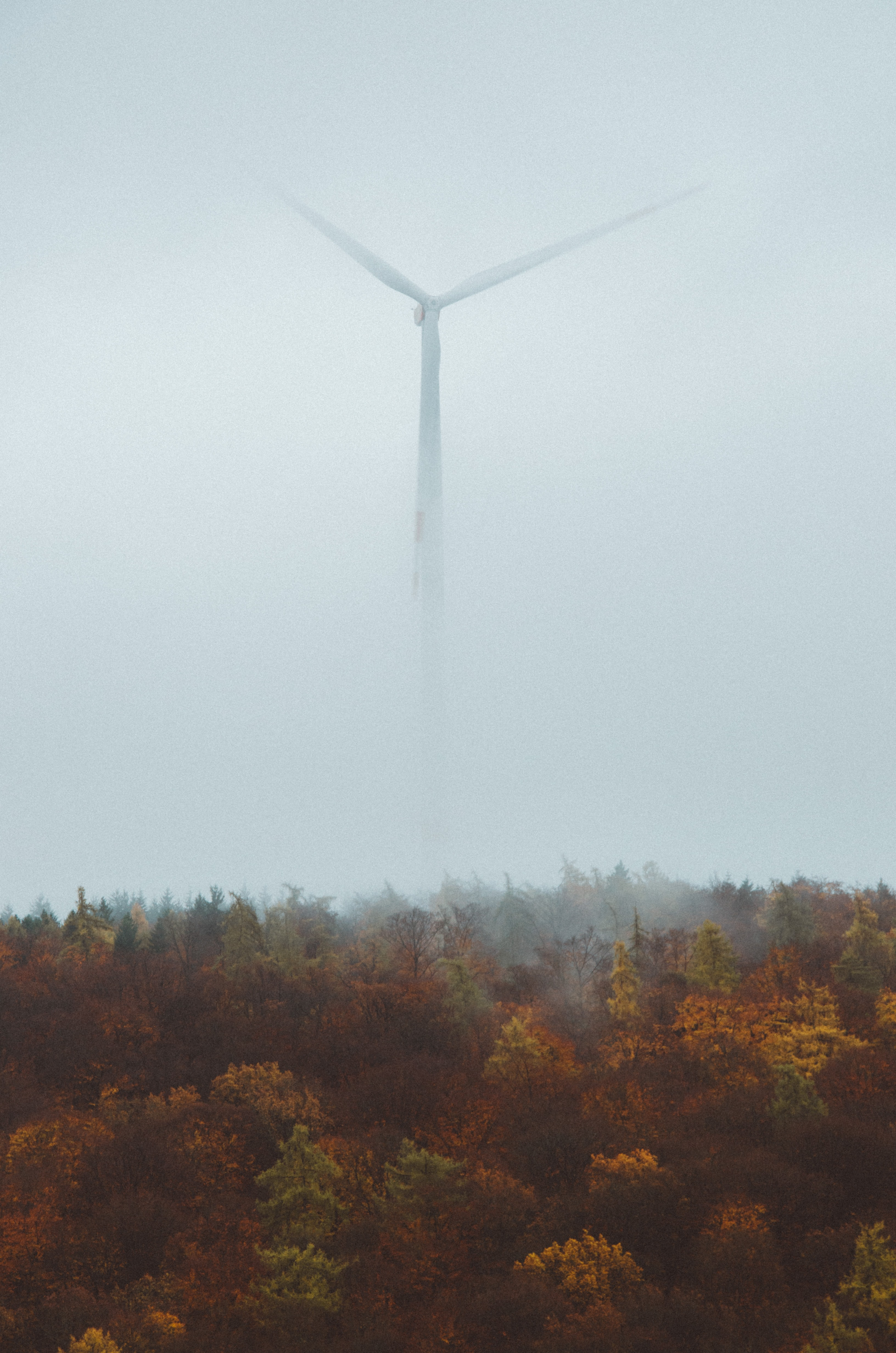 wind turbine covered in fog near forest