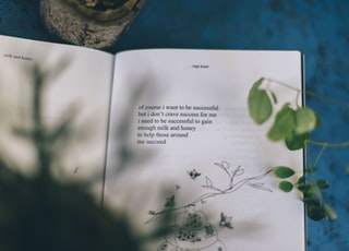 flat lay photography text book page