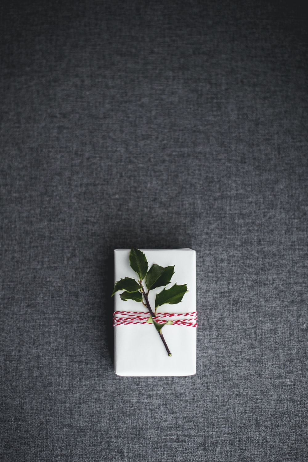 green leaves on white box placed on gray textile