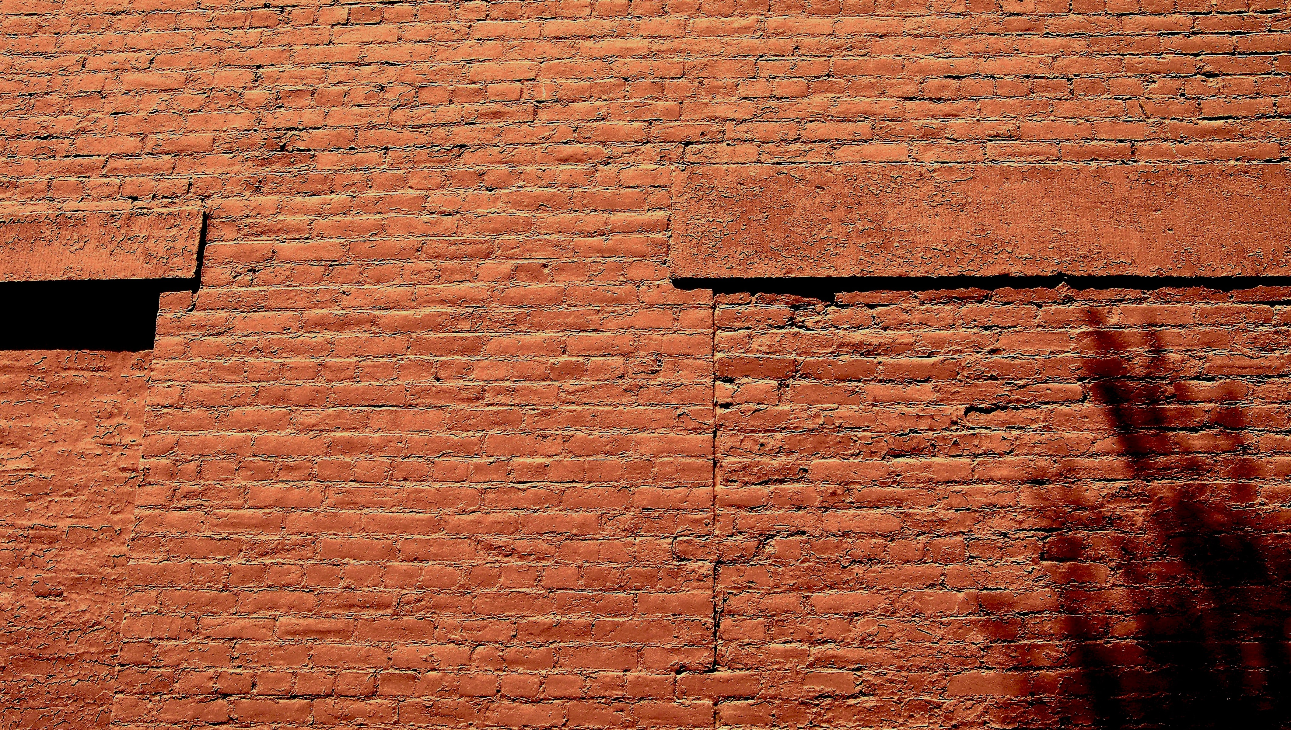 selective photograph of brick wall