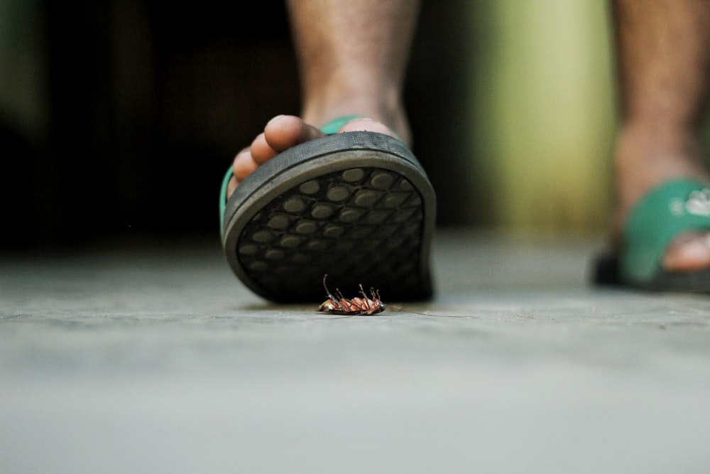 person wearing pair of slides