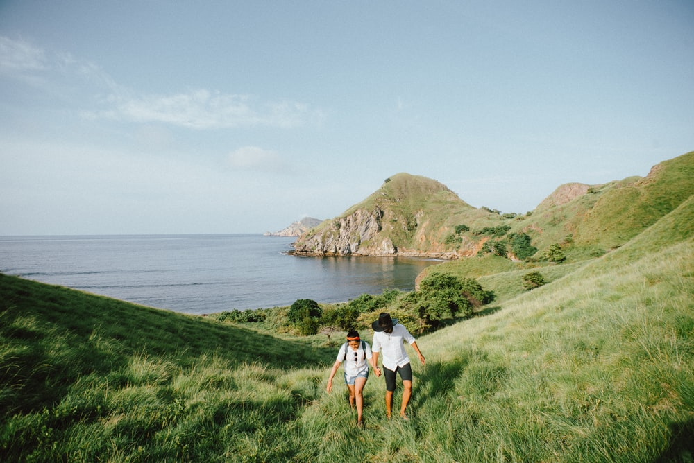 landscape photo of couple walking on green grass