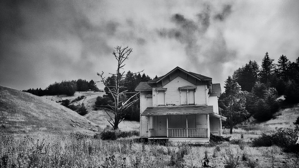 grayscale photography of wooden house