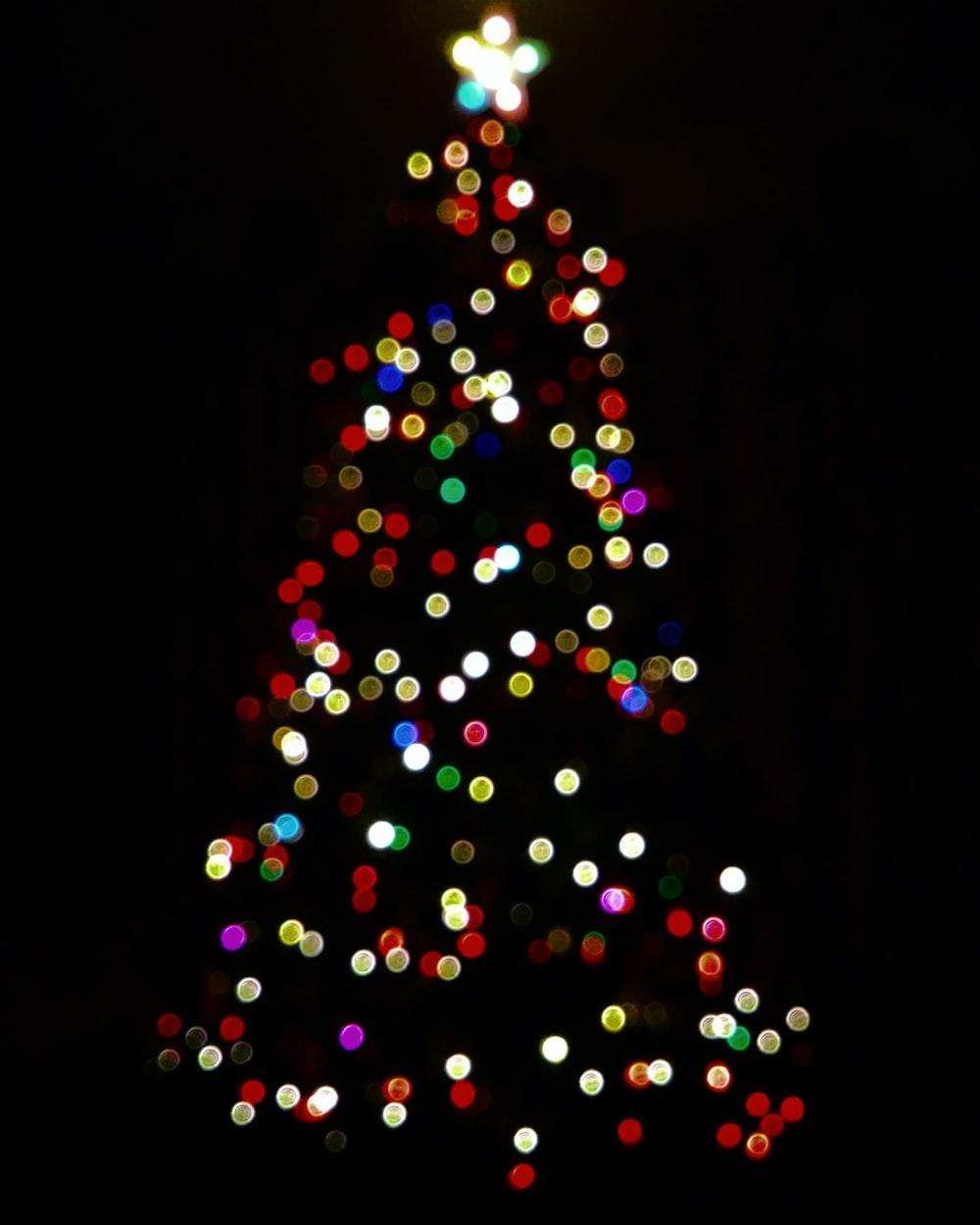multicolored lighted Christmas tree
