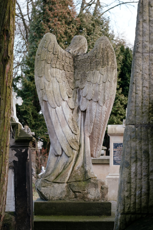 female angel statue near trees