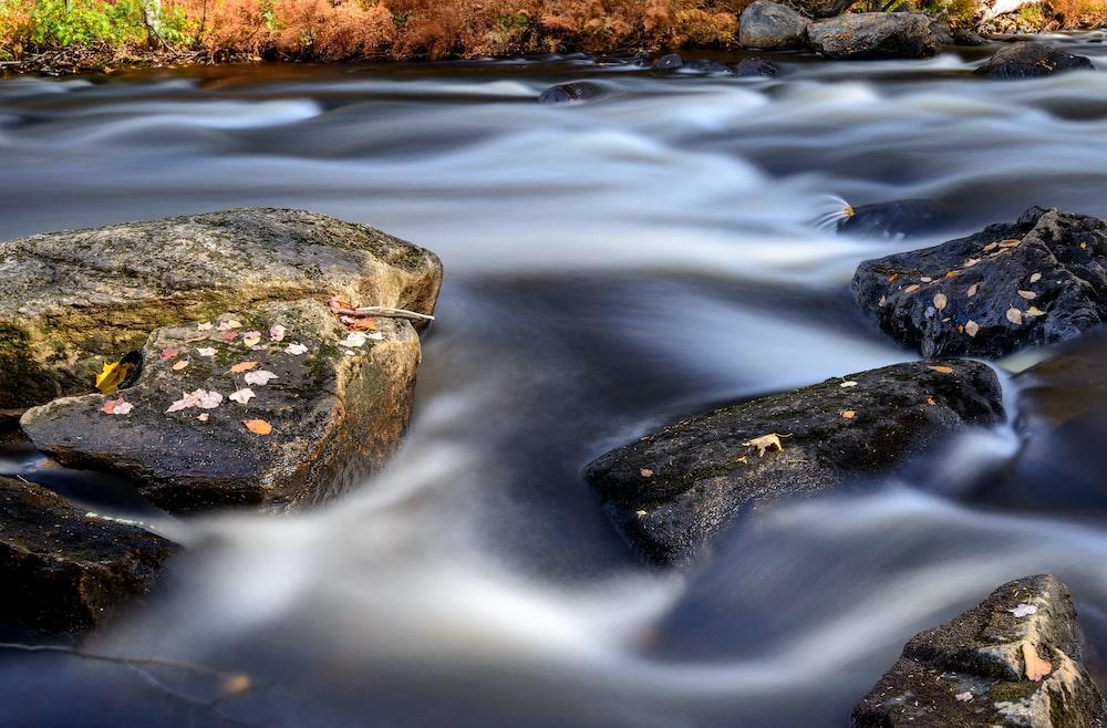 black rocks on river
