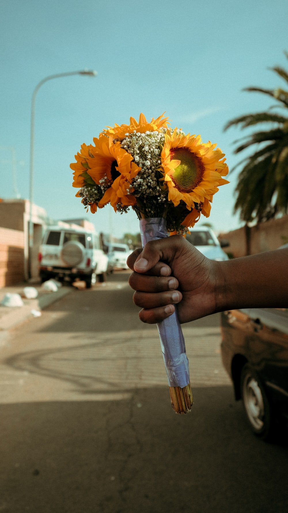person hand holding sunflower bouquet