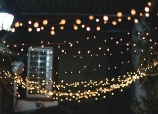 yellow string lights lighted during nighttime