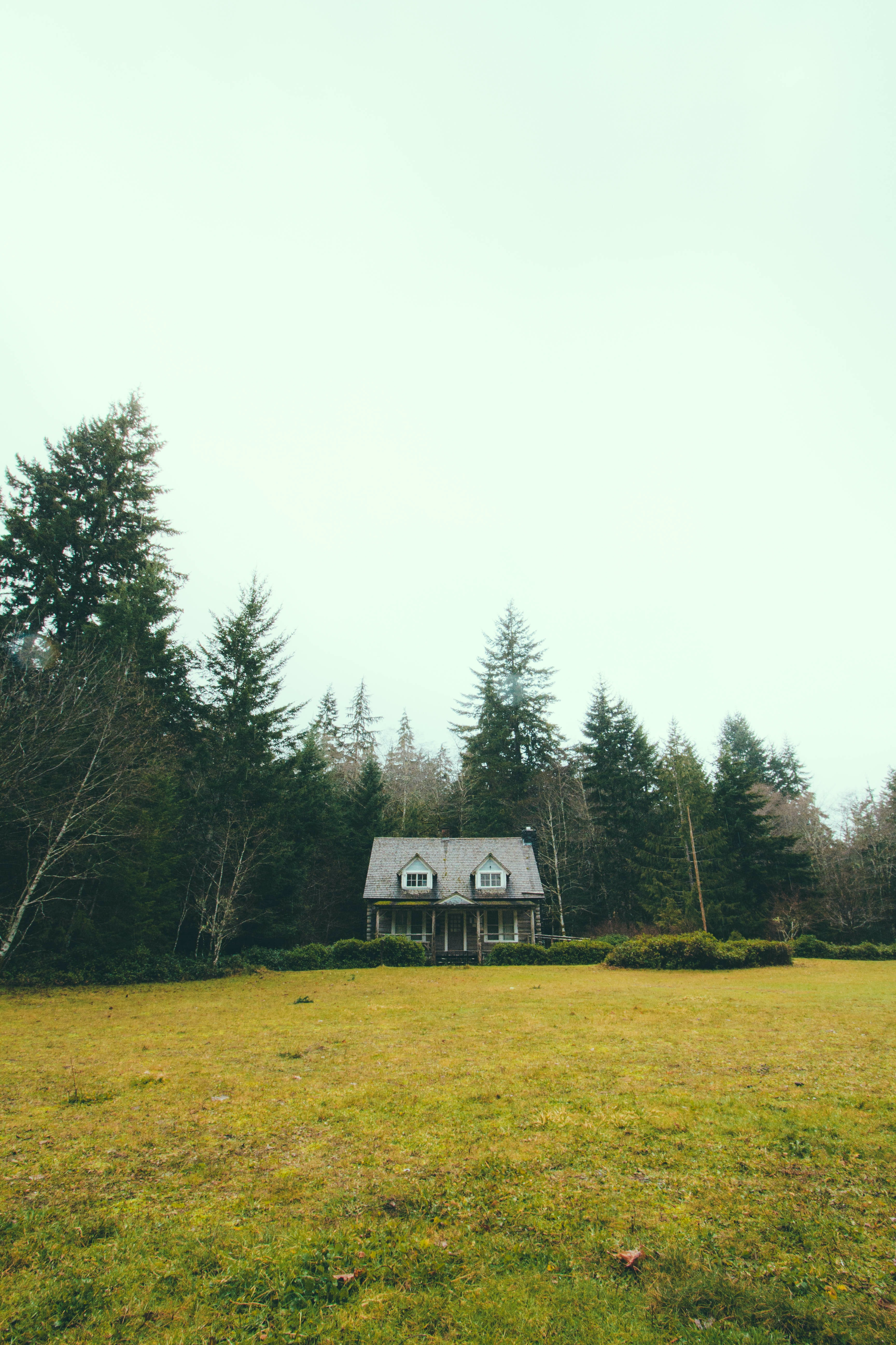 gray and white house near pine trees
