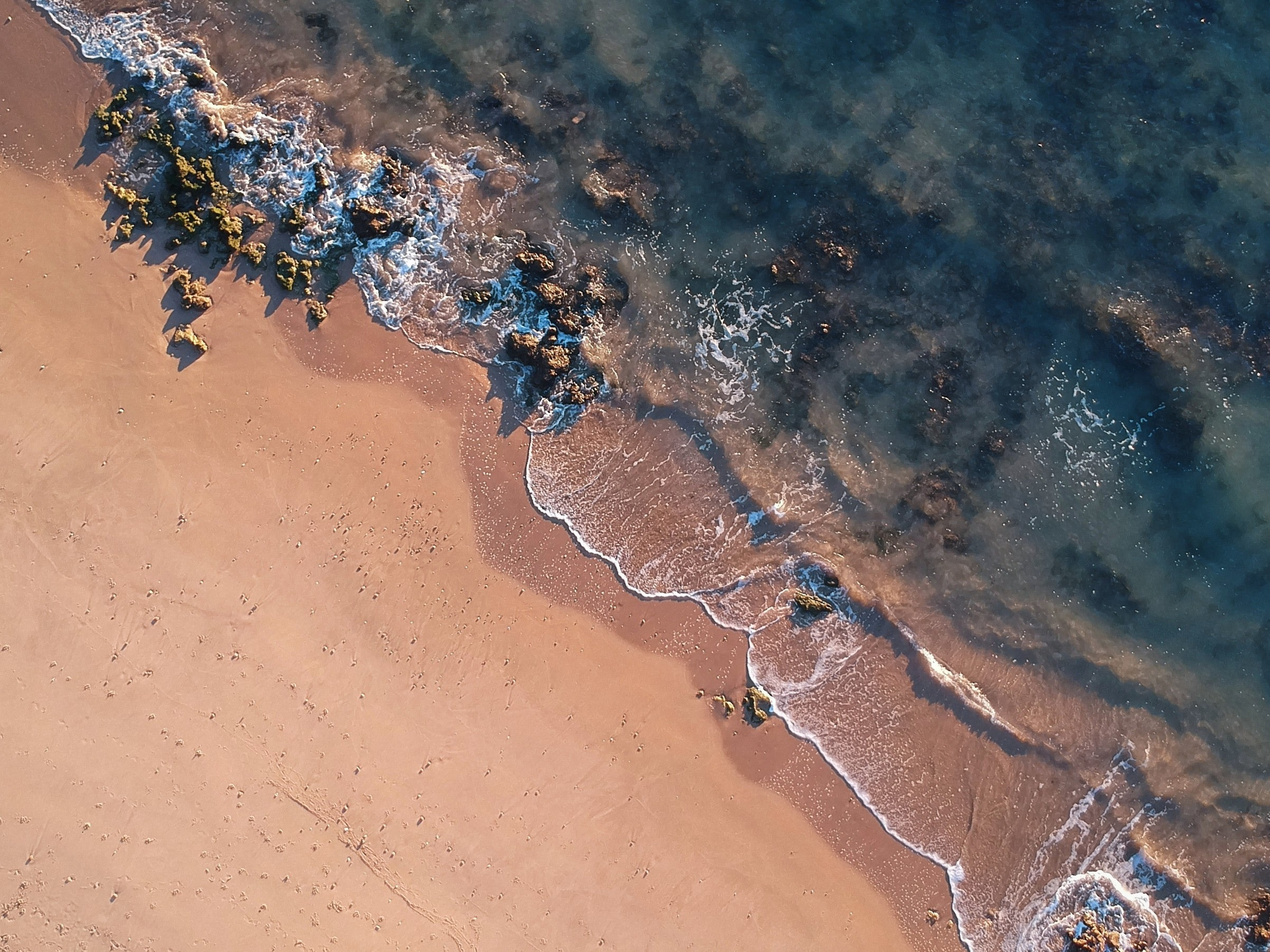 aerial photo of beach shore