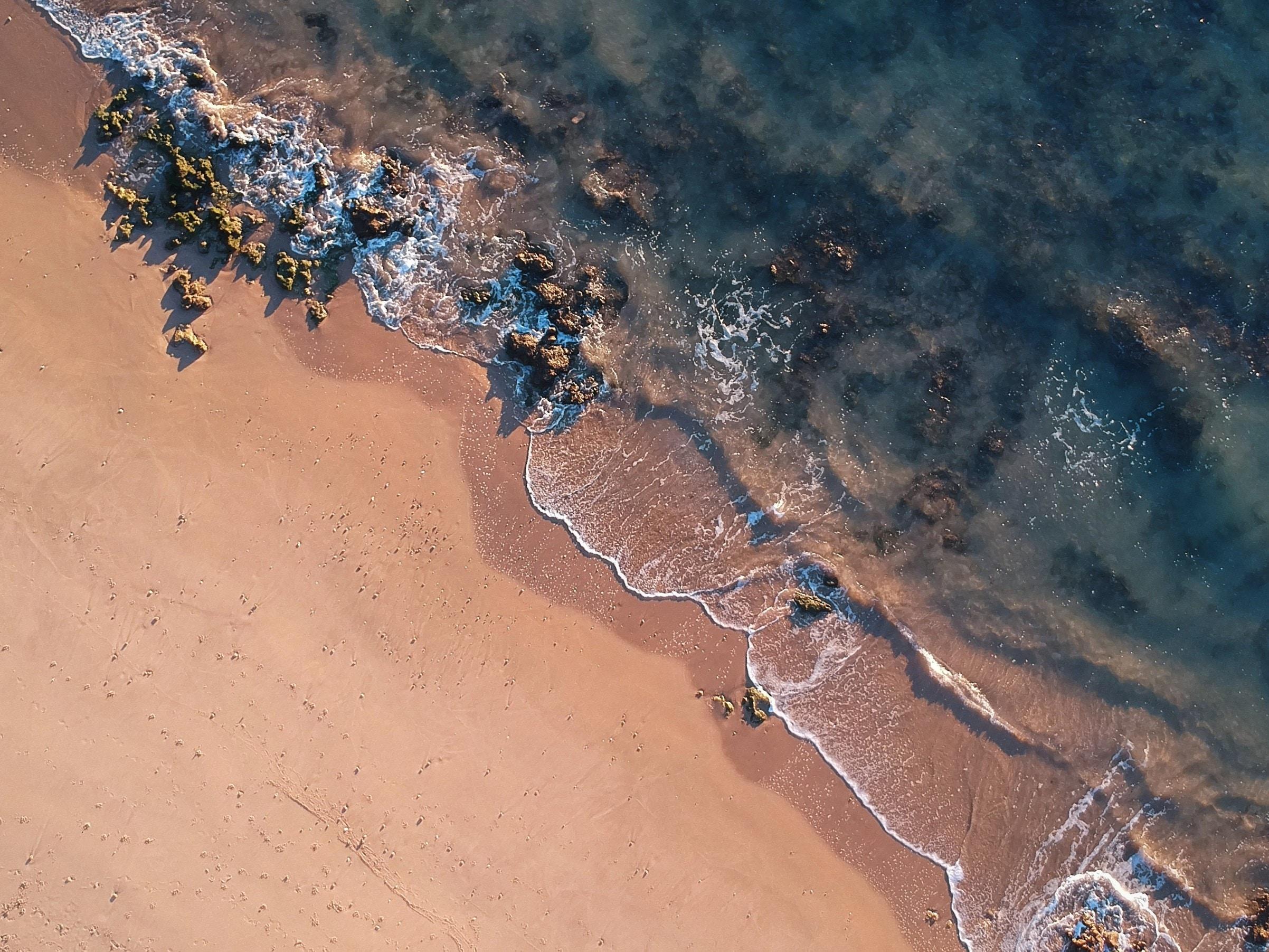 aerial photo of beach shore