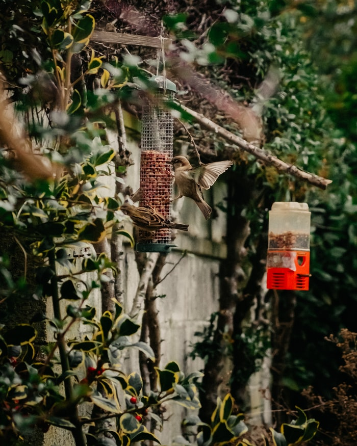 10 Easy DIY Garden Projects Anyone Can Do This Fall Season