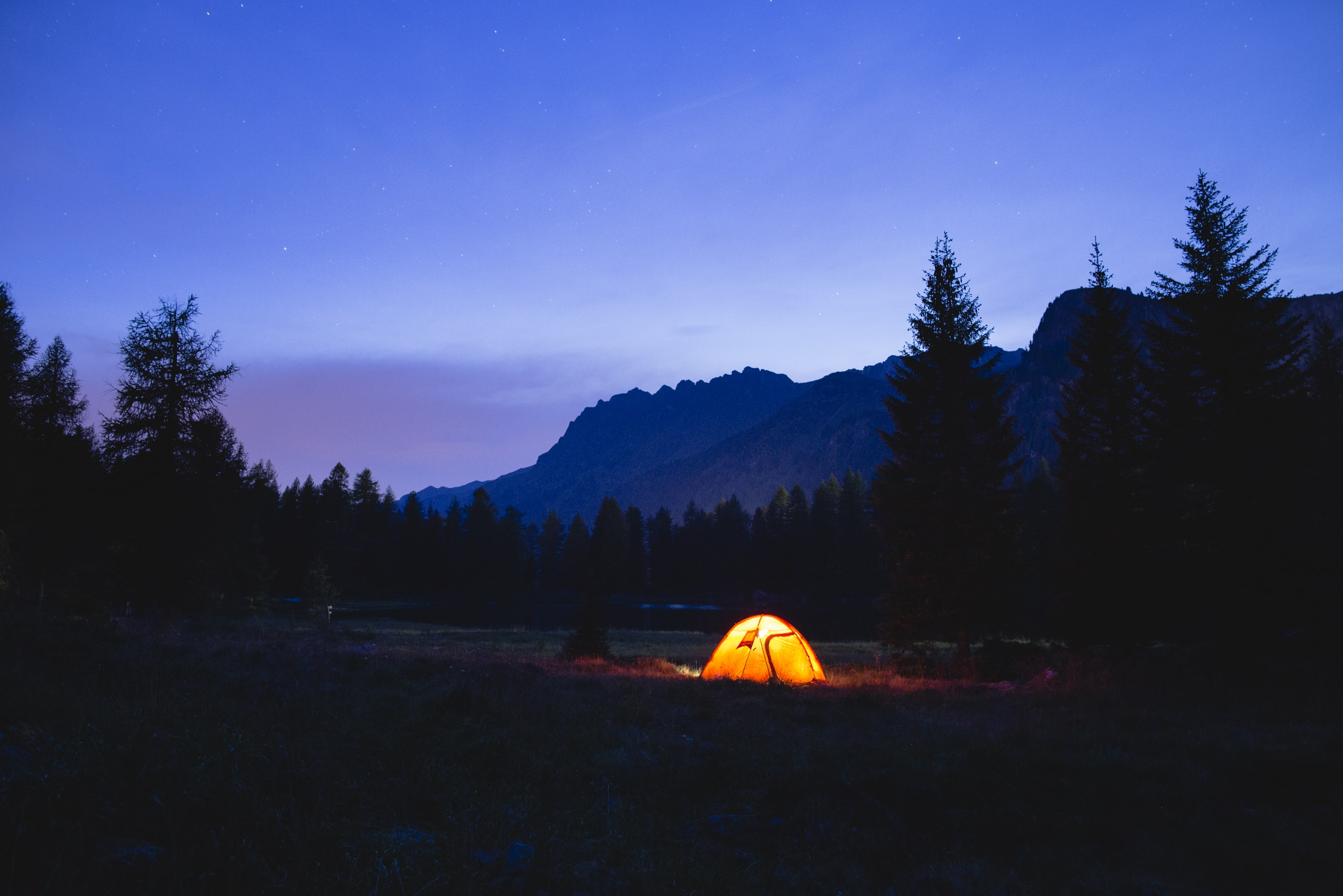 orange dome tent surrounded by silhouette of trees at blue hour