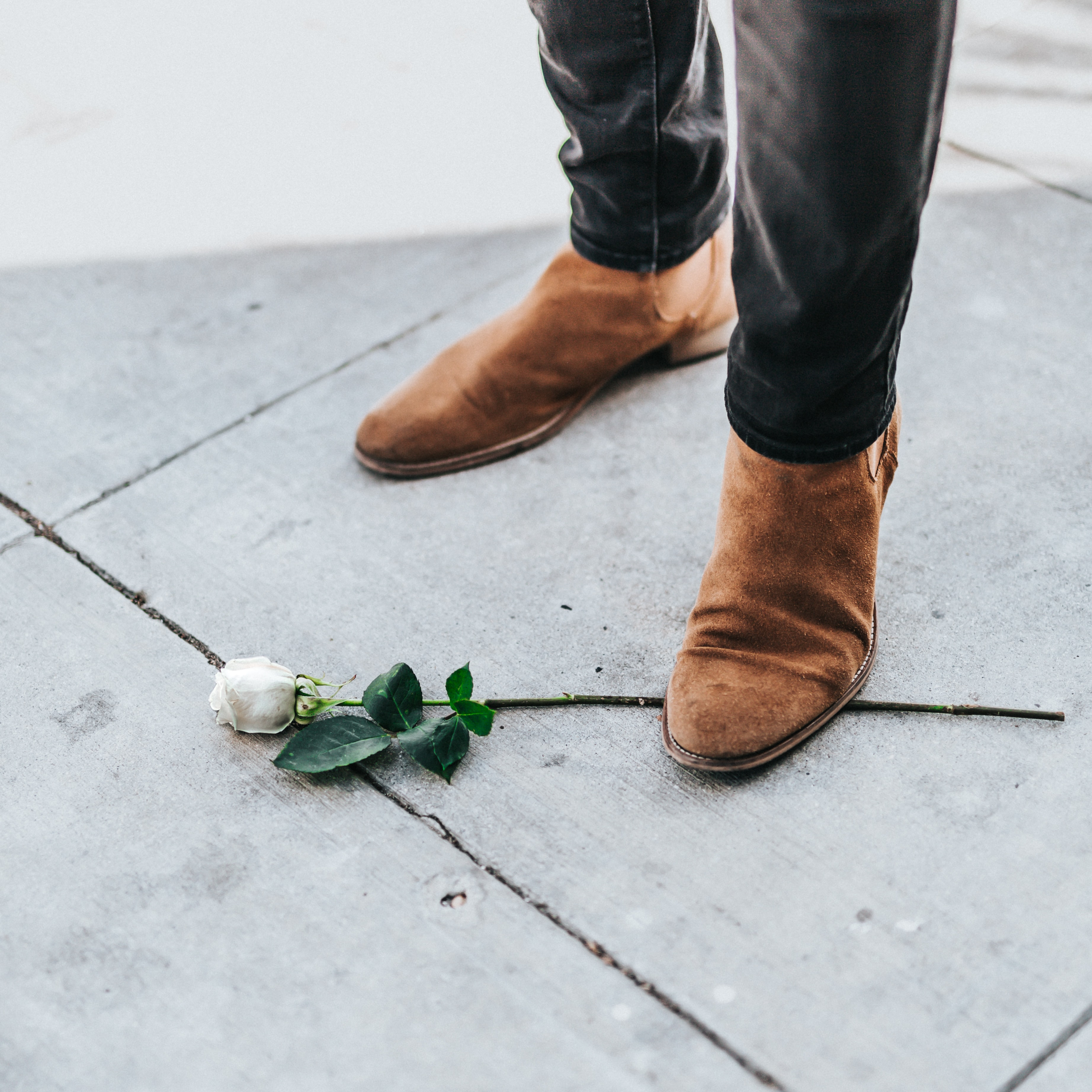 person stepping rose