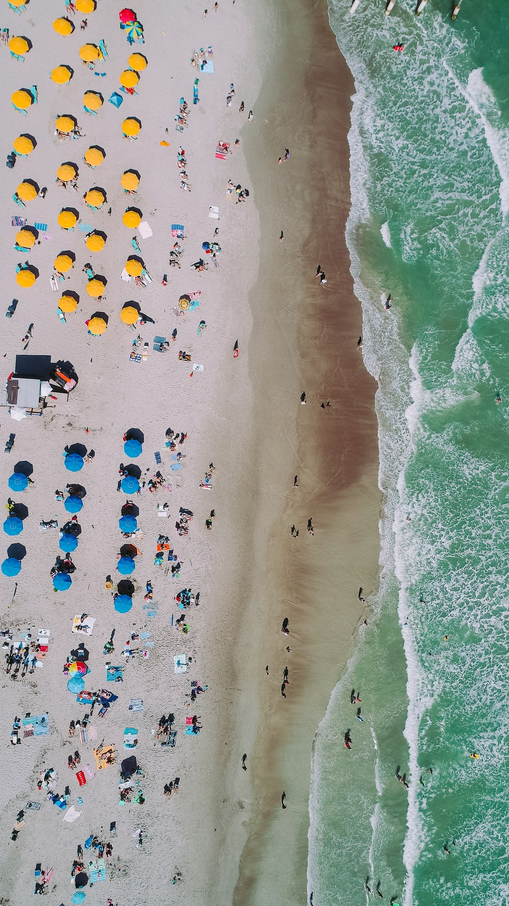 aerial photo of seashore with people