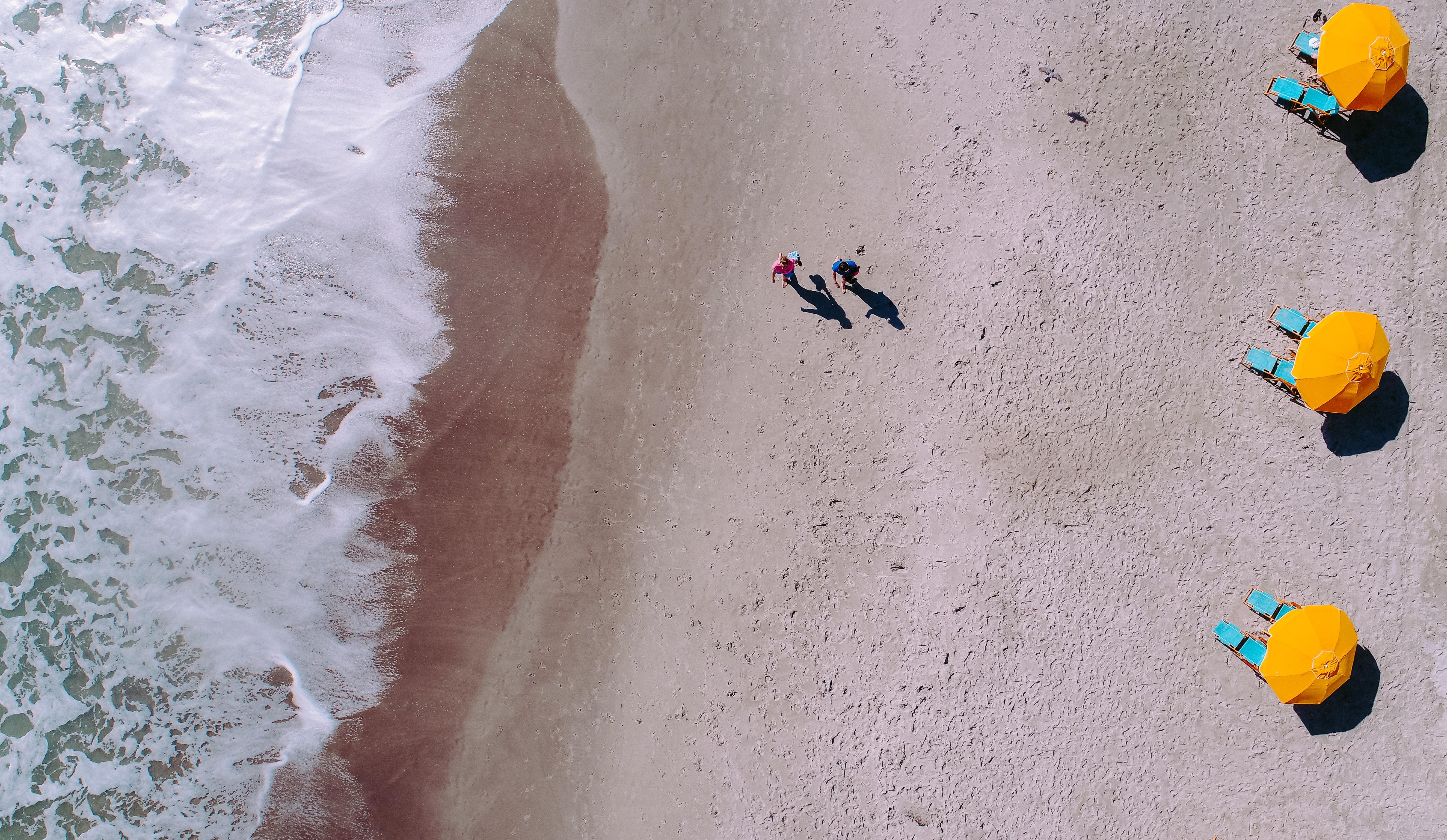 aerial photo of people on beach