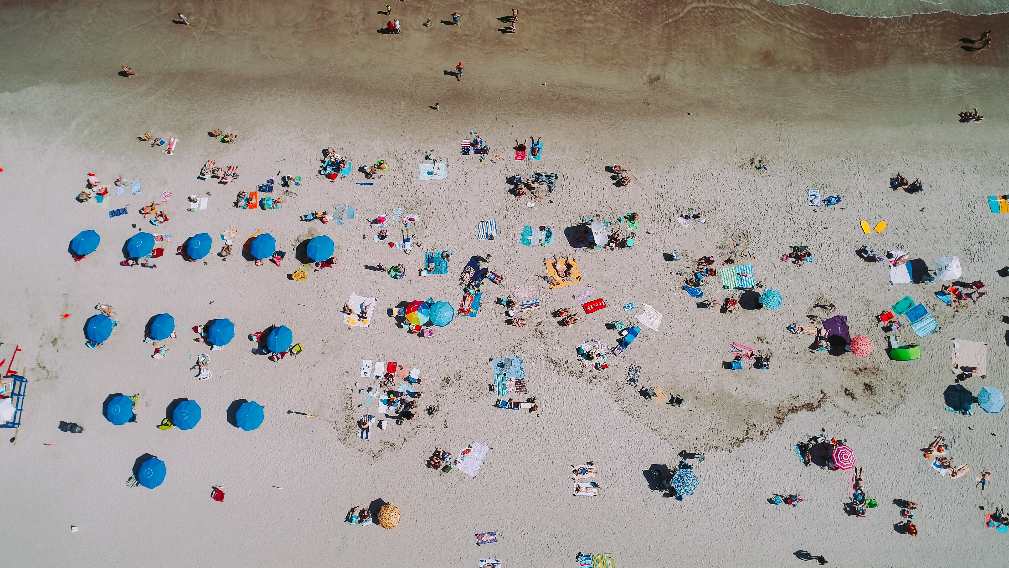 aerial photography of people on sea shore near parasols