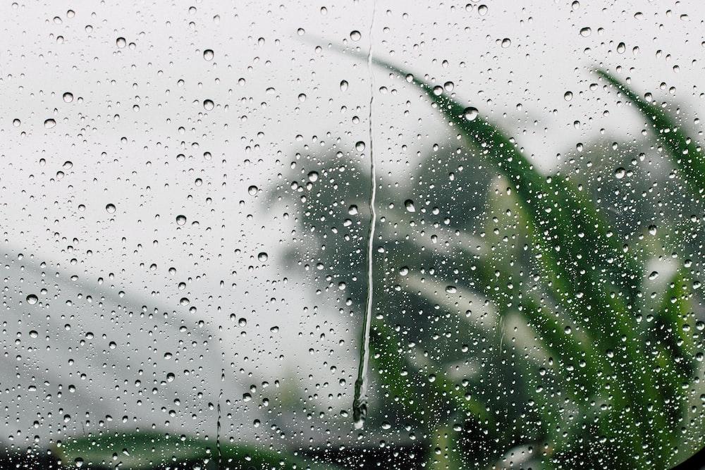 shallow focus photography of rain drop on glass