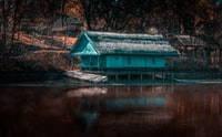blue wooden house near body of water during daytime