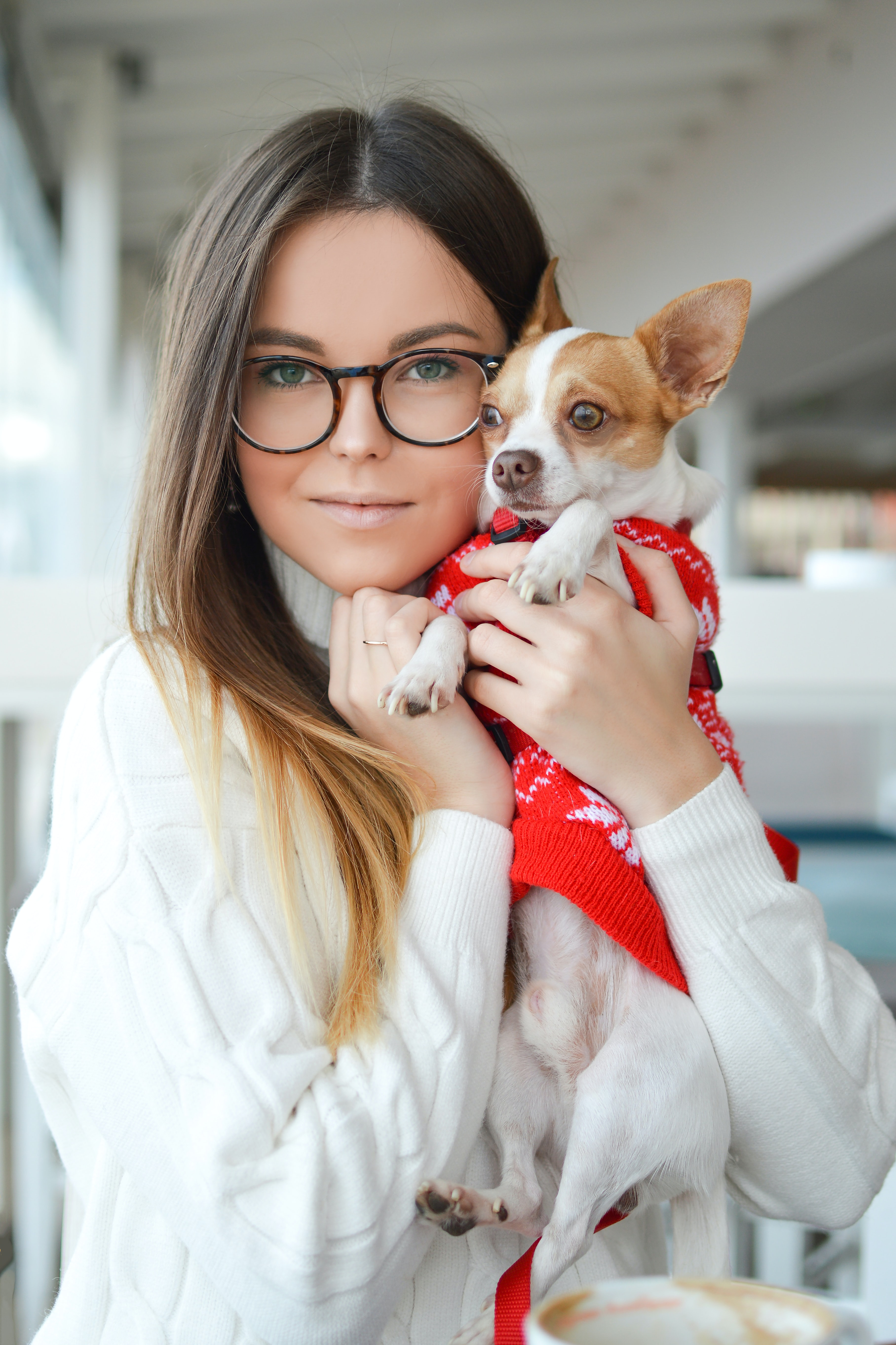 woman wearing sweater while cuddling Chihuahua