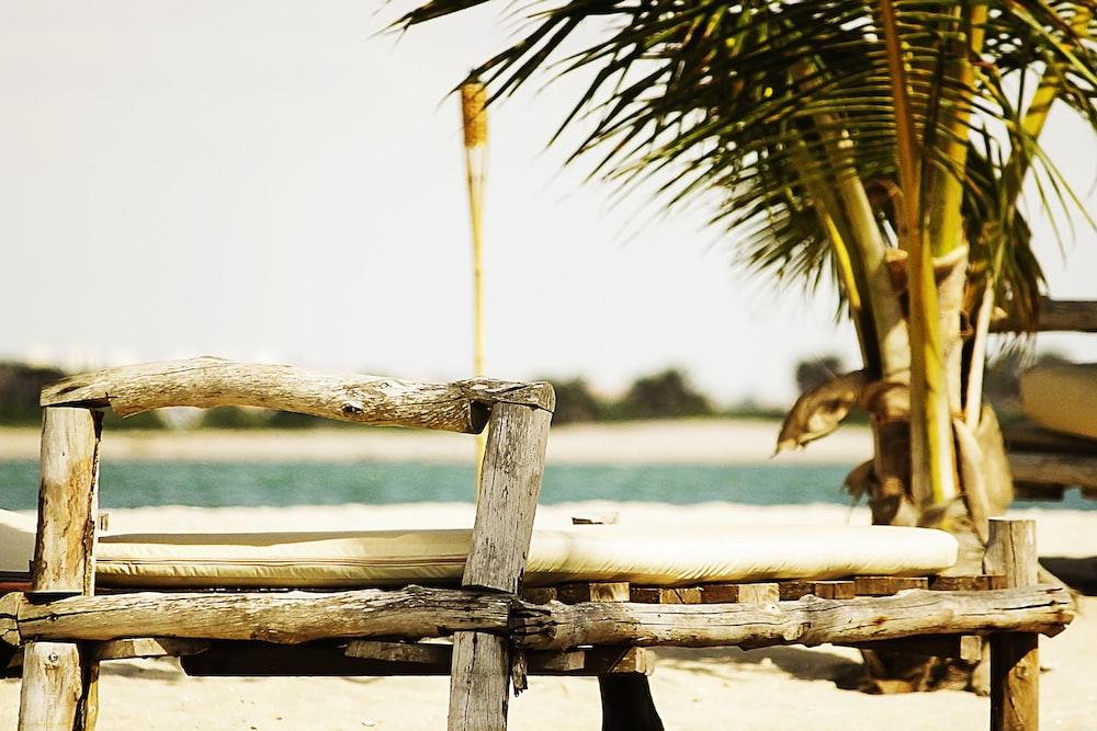 brown beach beside seashore
